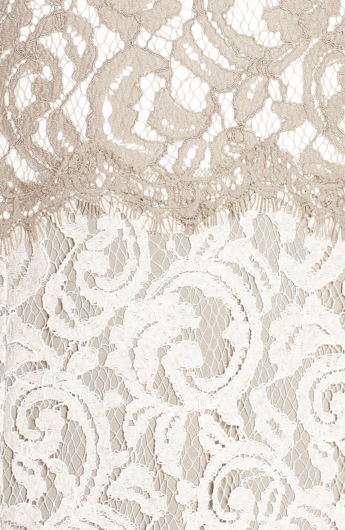 Alternate Image 3  - Tadashi Shoji V-Neck Lace Gown (Regular & Petite)