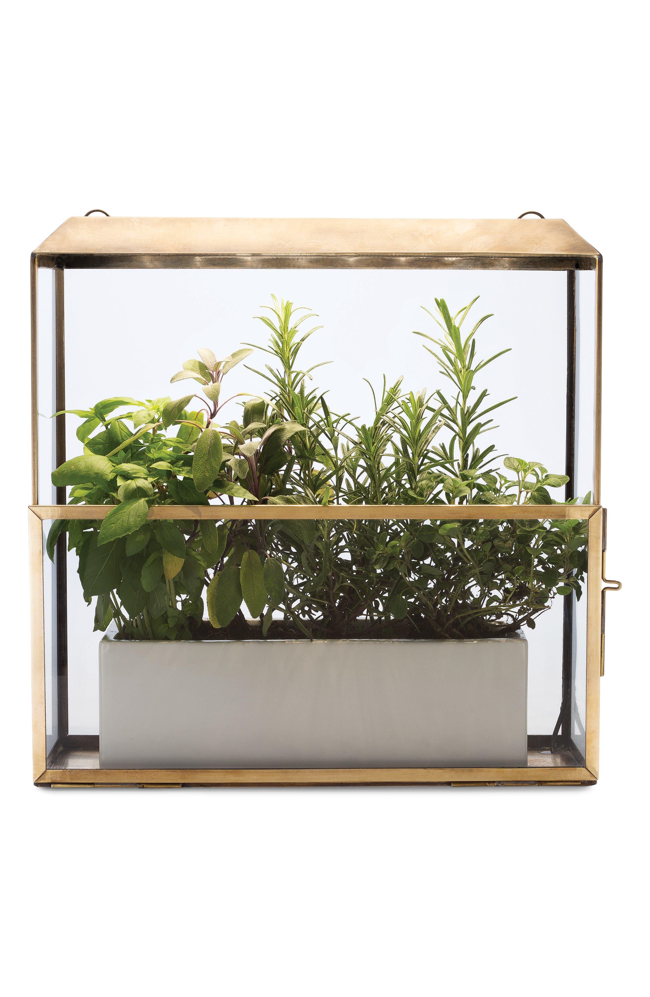 Growhouse Greenhouse & Growlight,                             Alternate thumbnail 6, color,                             Brass N Glass