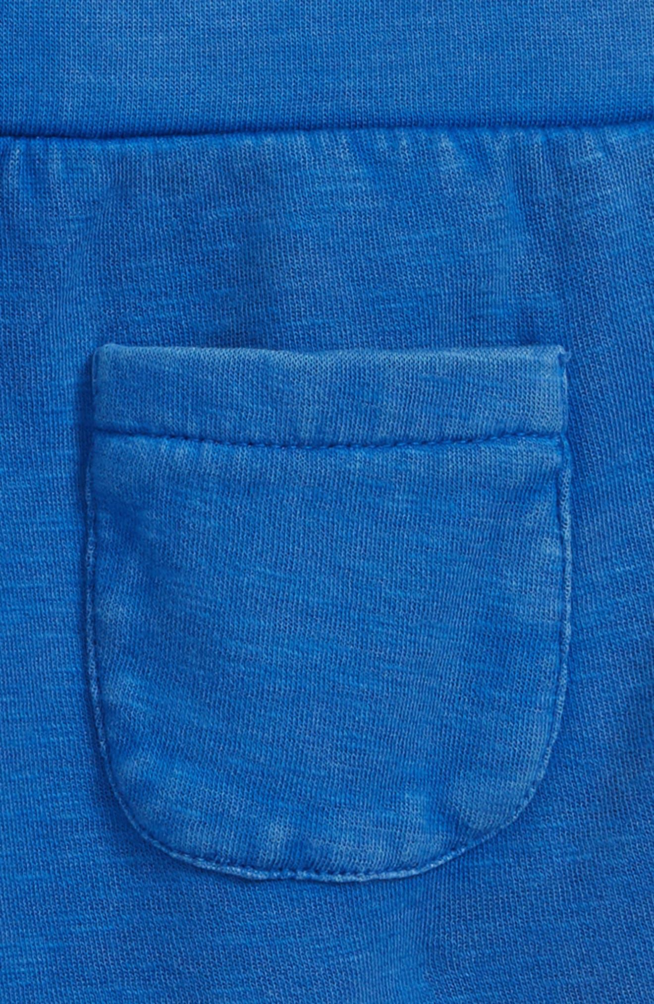 Knit Shorts,                             Alternate thumbnail 3, color,                             Blue Surf