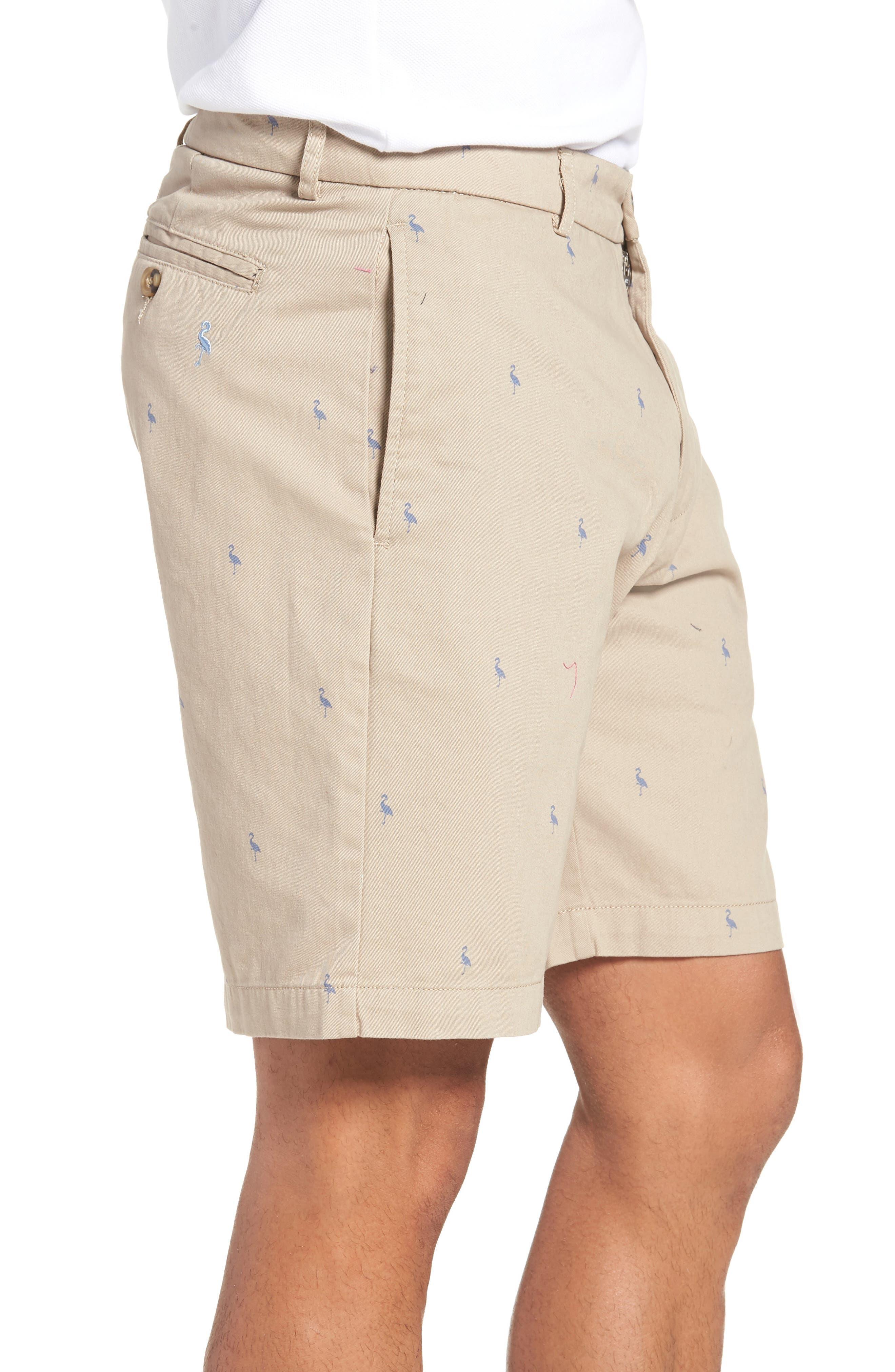 Baden Bird Regular Fit Chino Shorts,                             Alternate thumbnail 3, color,                             Dark Khaki