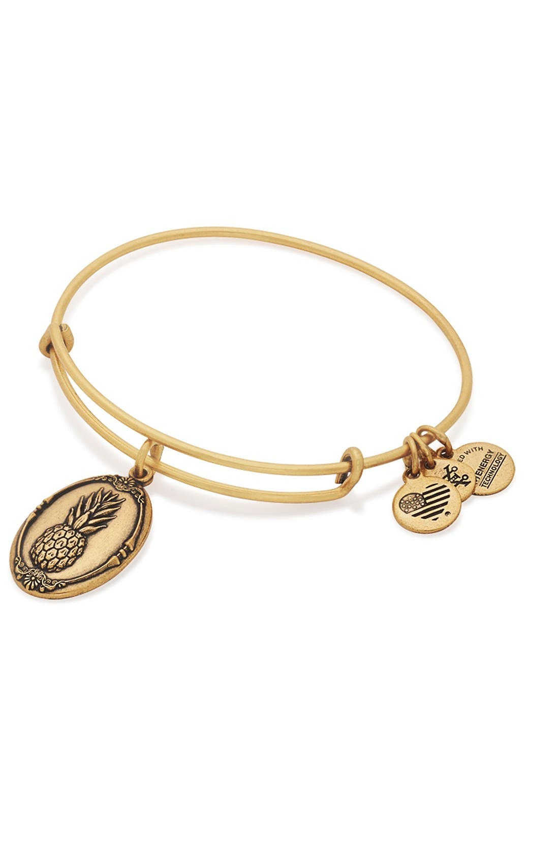 Alternate Image 3  - Alex and Ani 'Pineapple' Adjustable Wire Bangle