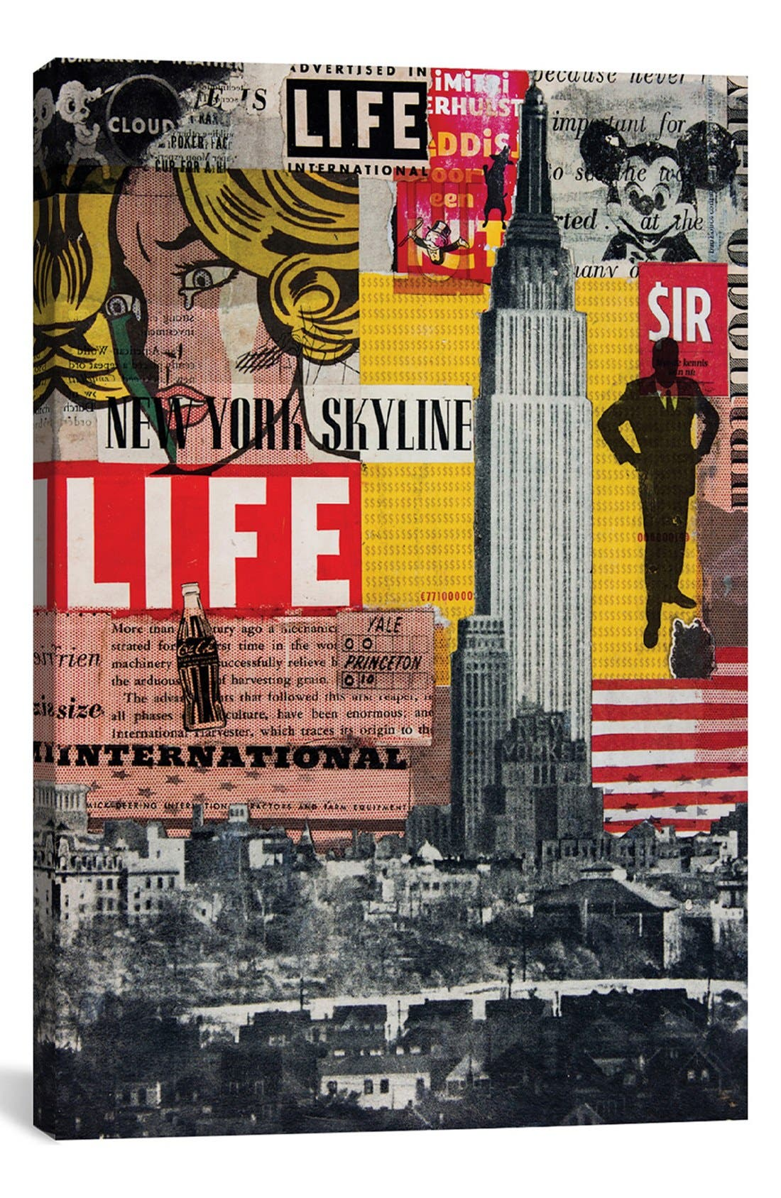 Main Image - iCanvas 'Hanging in the Air' Giclée Print Canvas Art