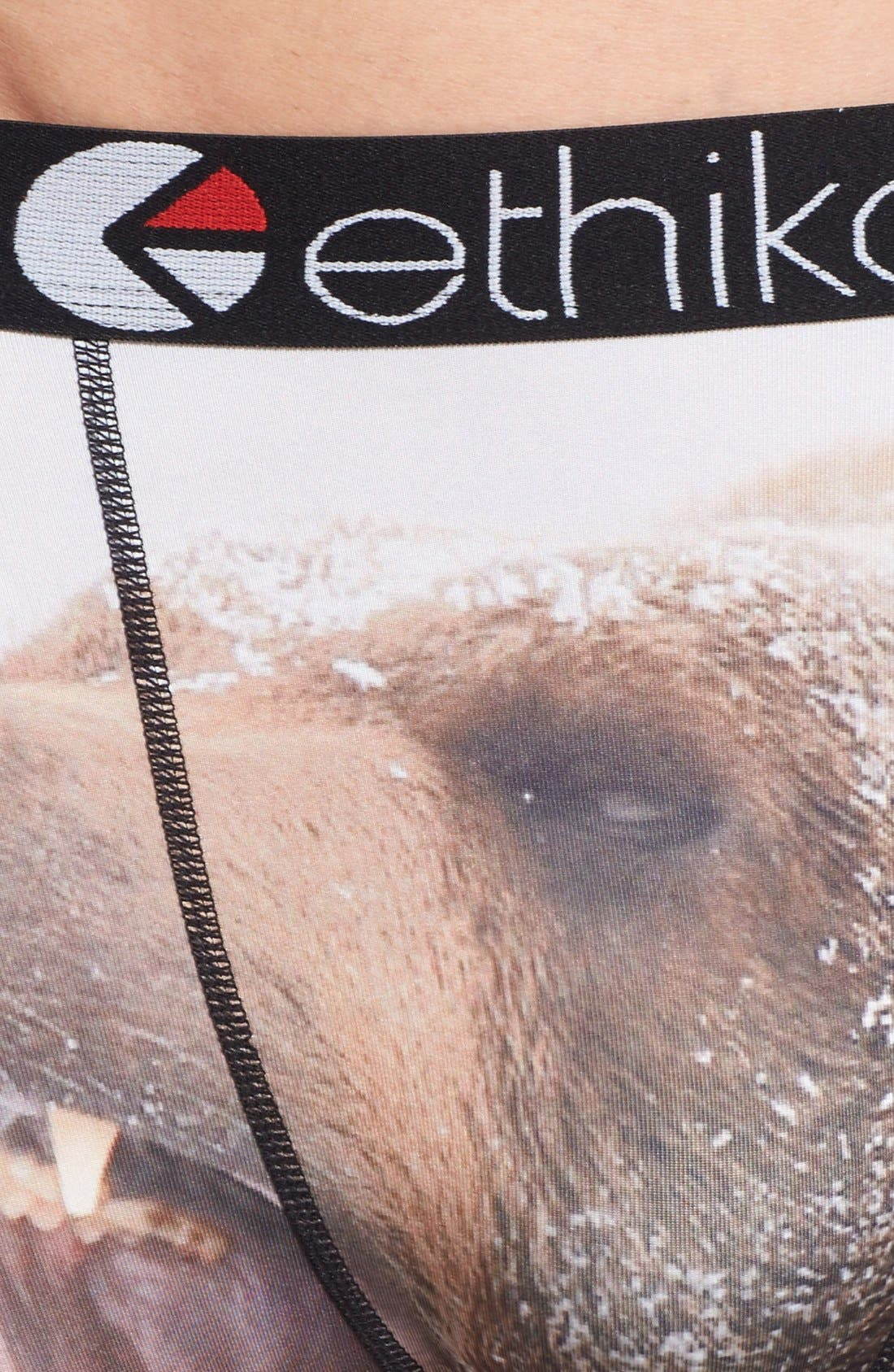 Alternate Image 4  - Ethika Bears Stretch Boxer Briefs
