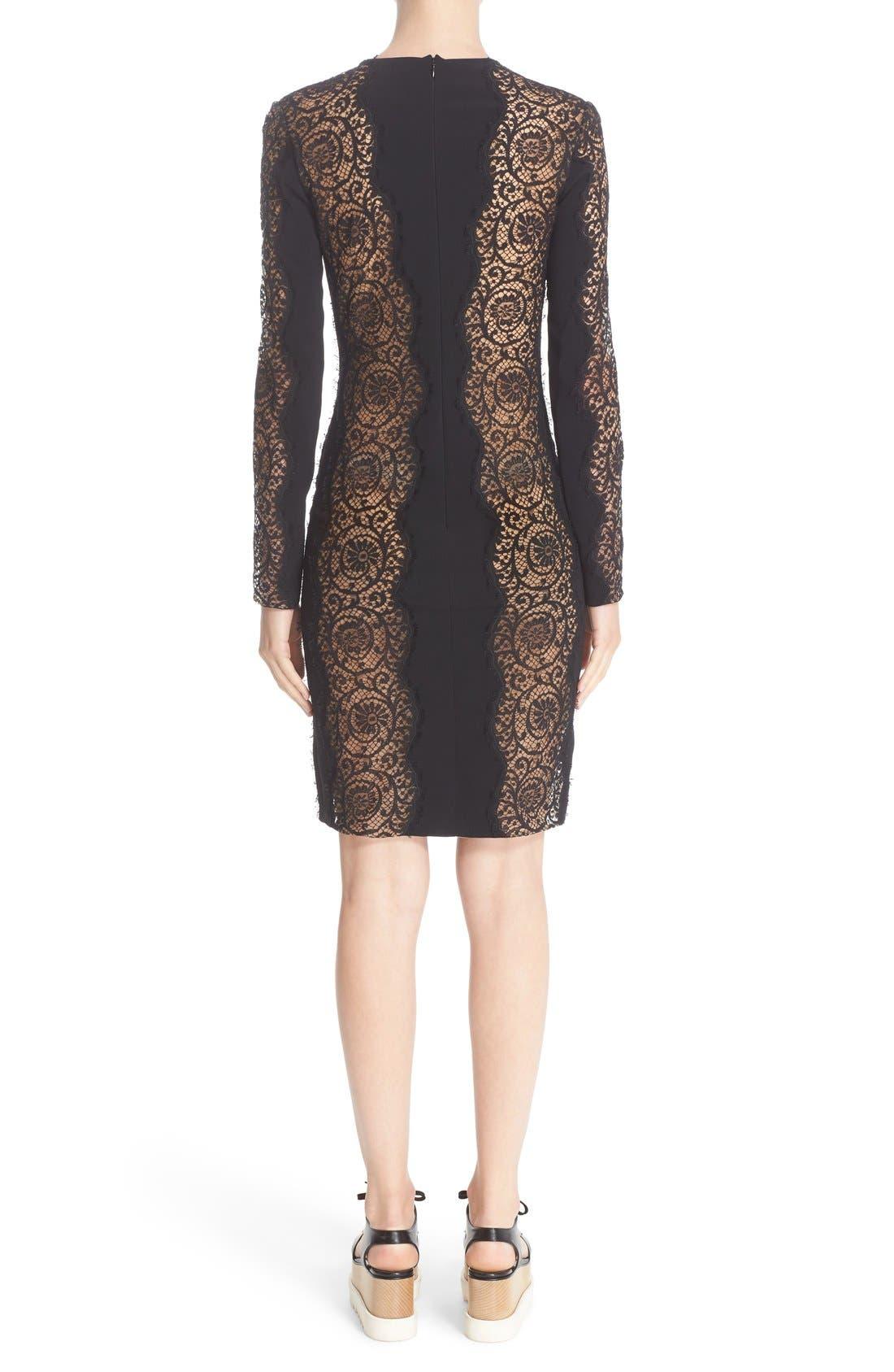 Alternate Image 2  - Stella McCartney Charlie Lace Dress