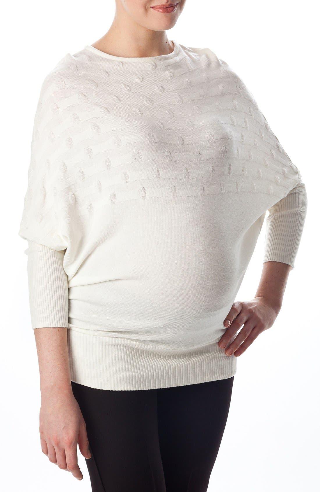 Alternate Image 4  - PIETRO BRUNELLI Megeve Maternity Top