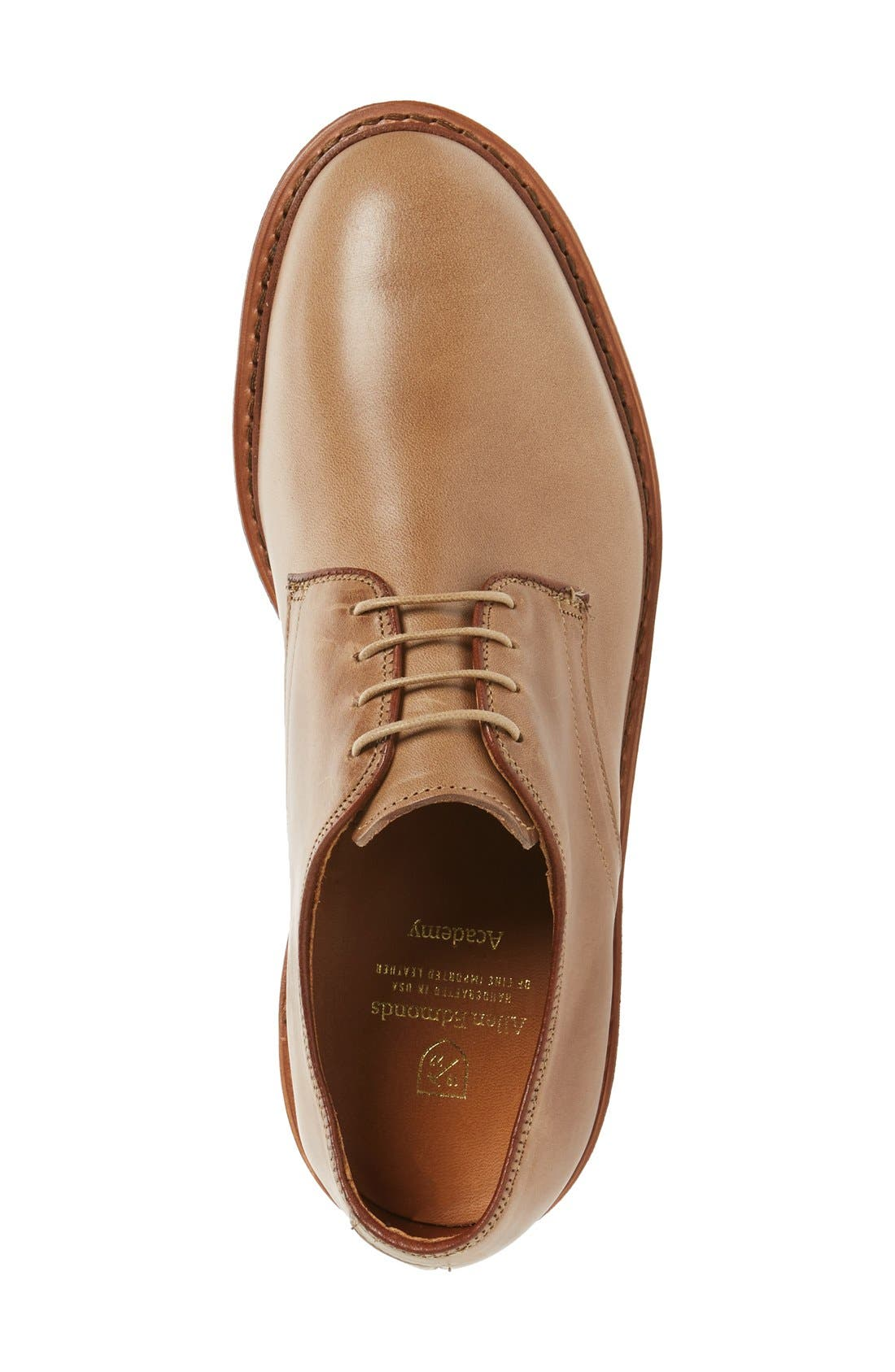 Academy Plain Toe Derby,                             Alternate thumbnail 3, color,                             Natural Leather