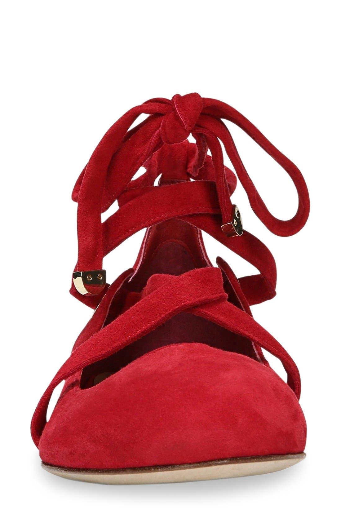 Alternate Image 5  - Diane von Furstenberg Dakar Ankle Tie Flat (Women)