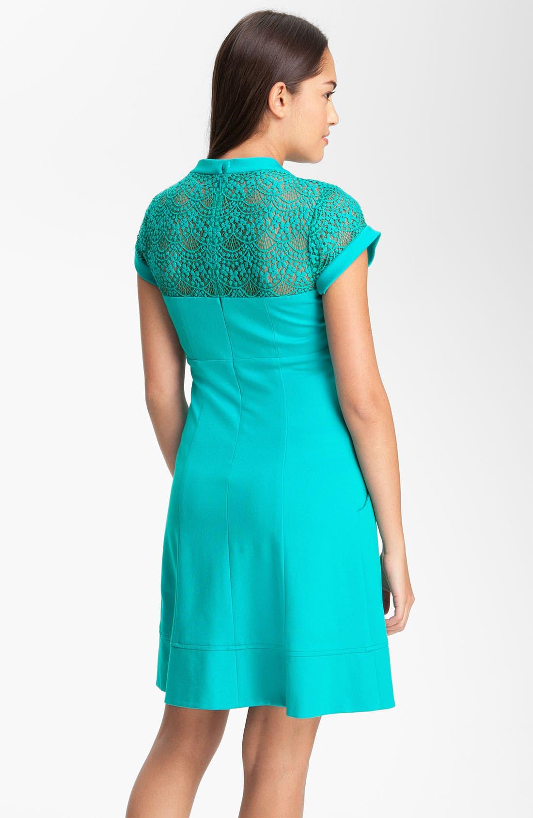 Alternate Image 2  - Nanette Lepore 'Shadow' Pleated Dress