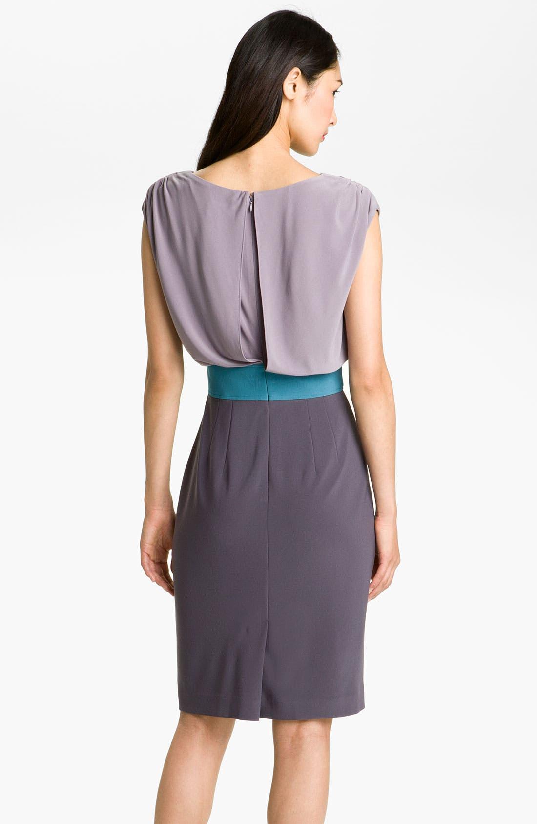 Alternate Image 2  - Adrianna Papell Colorblock Blouson Jersey Dress
