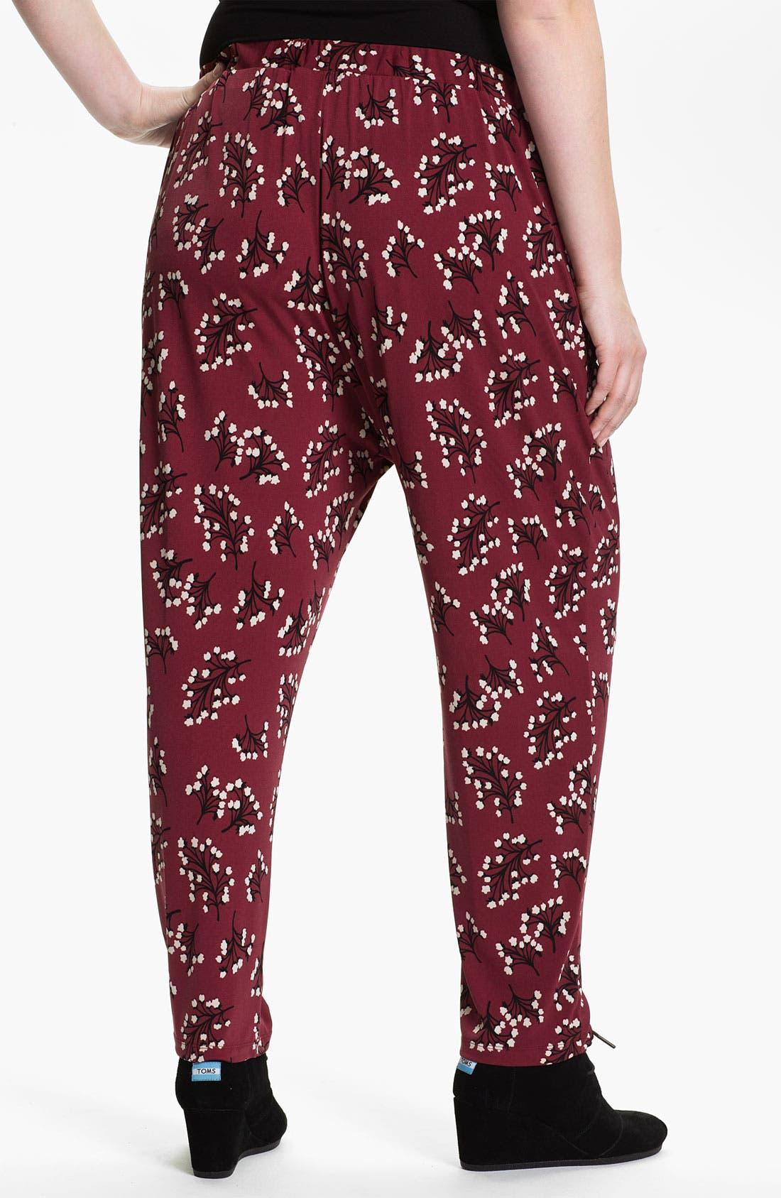 Alternate Image 2  - Evans 'Mimosa' Pants (Plus Size)