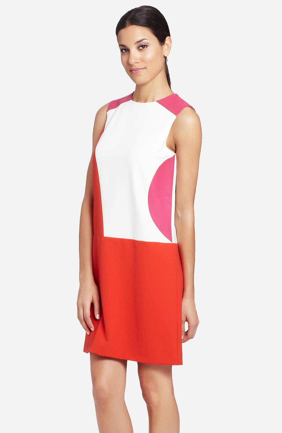 Alternate Image 1 Selected - Cynthia Steffe 'Rory' Sleeveless Colorblock Shift Dress