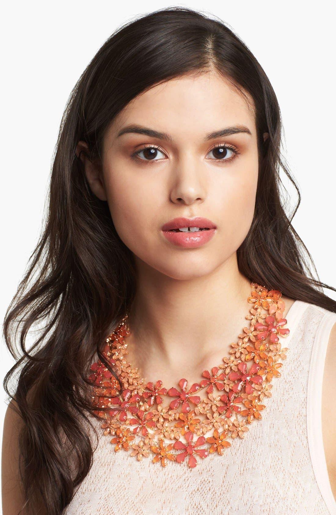 Main Image - Tasha 'Field of Flowers' Bib Necklace