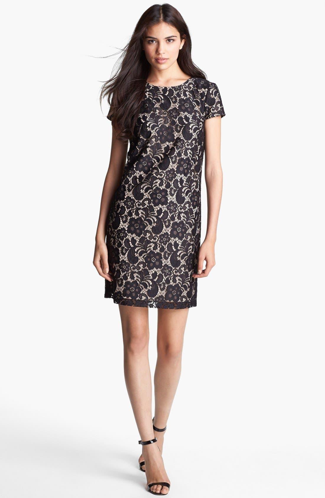 Alternate Image 2  - Ivy & Blu Lace Shift Dress