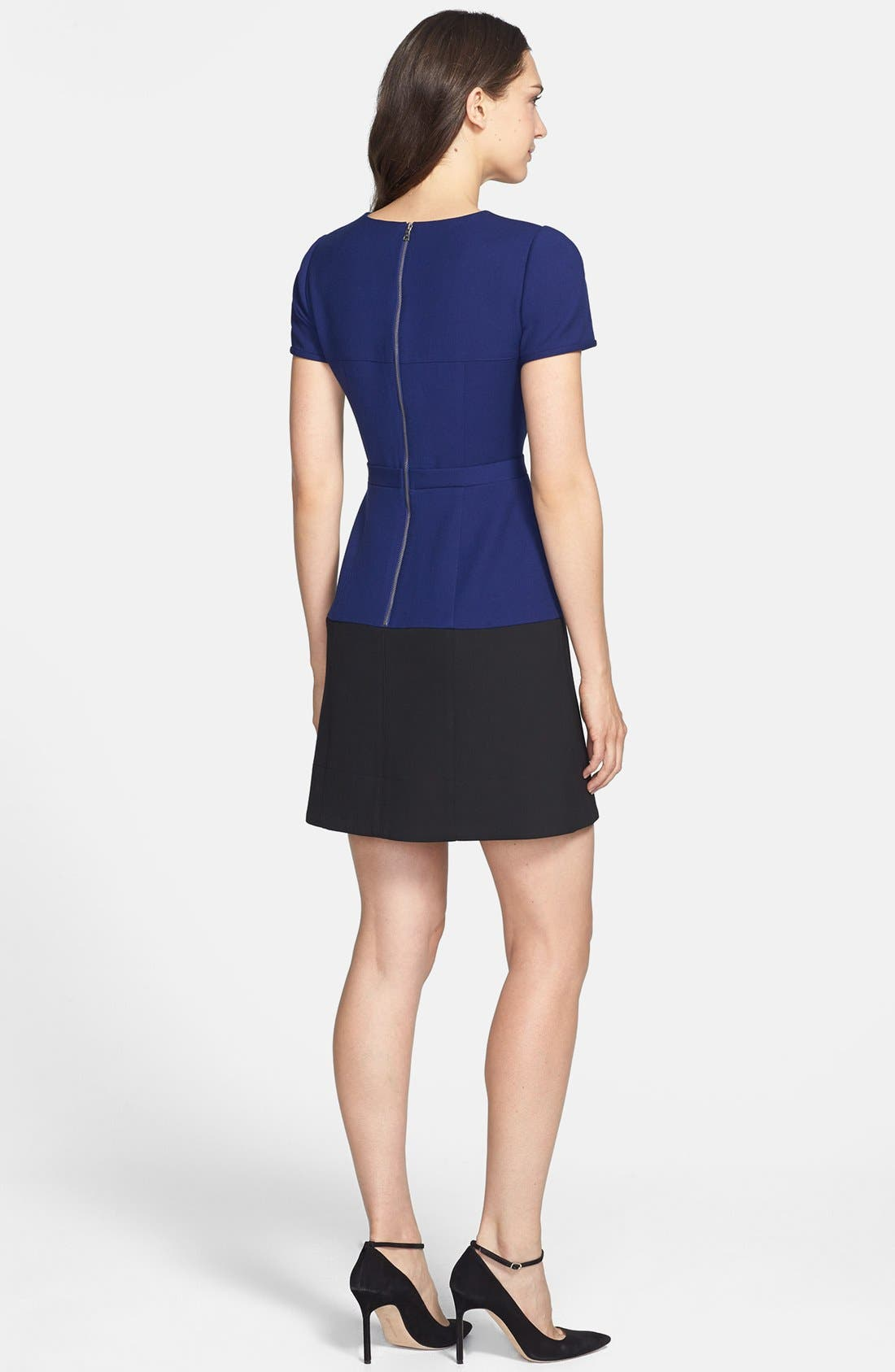 Alternate Image 2  - BCBGMAXAZRIA 'Hannah' Colorblock Fit & Flare Dress