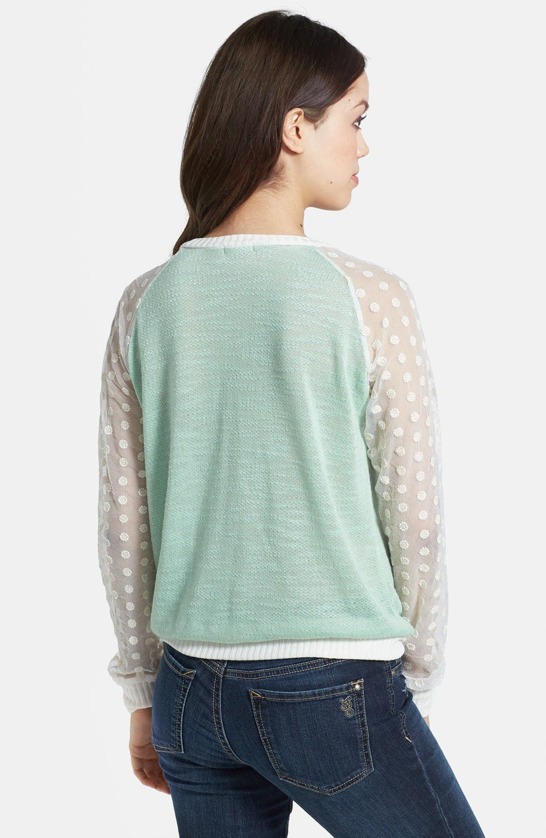 Alternate Image 2  - Olivia Moon Sheer Sleeve Sweater