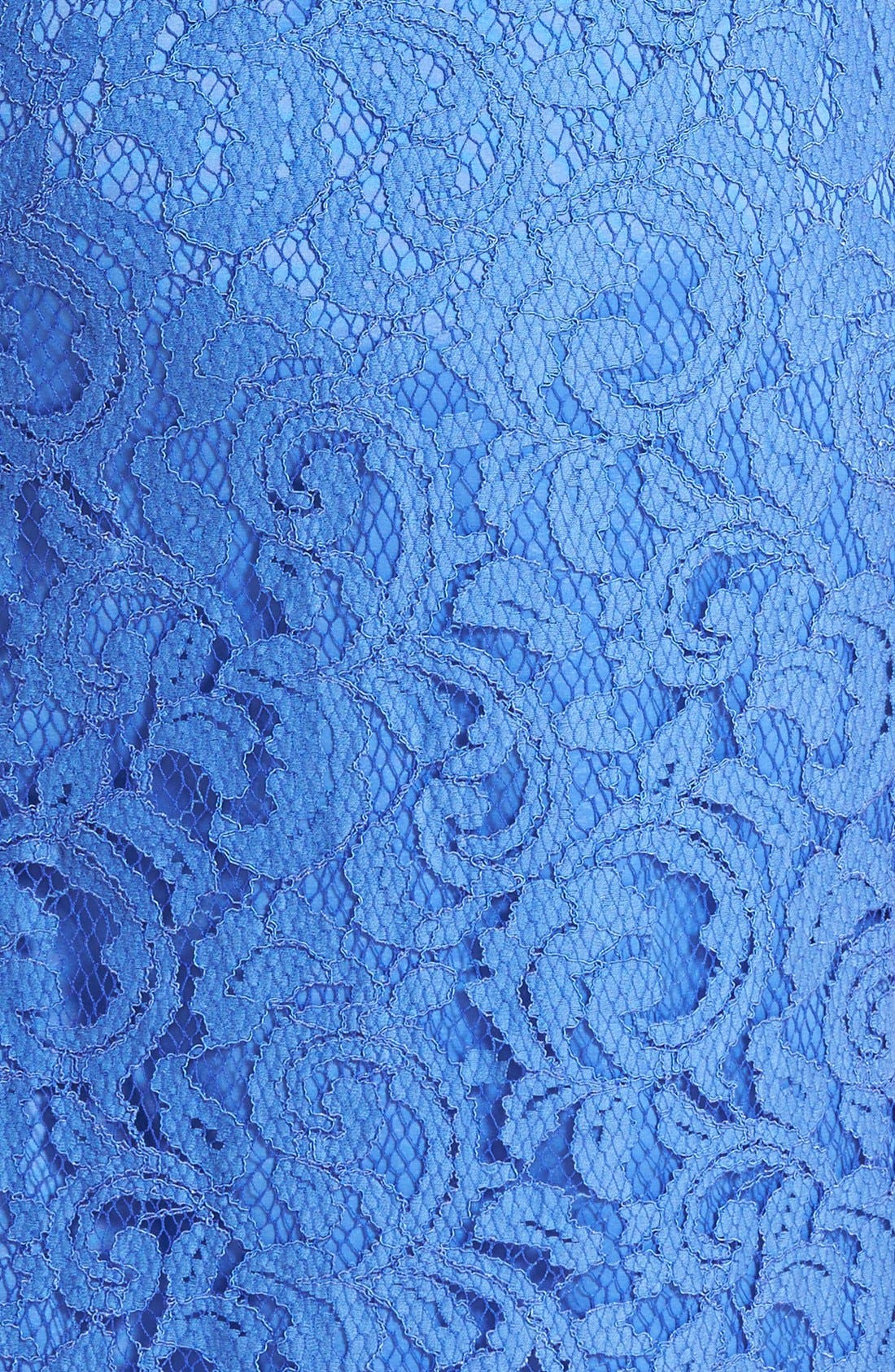 Alternate Image 3  - Adrianna Papell Sleeveless Lace Sheath Dress (Plus)