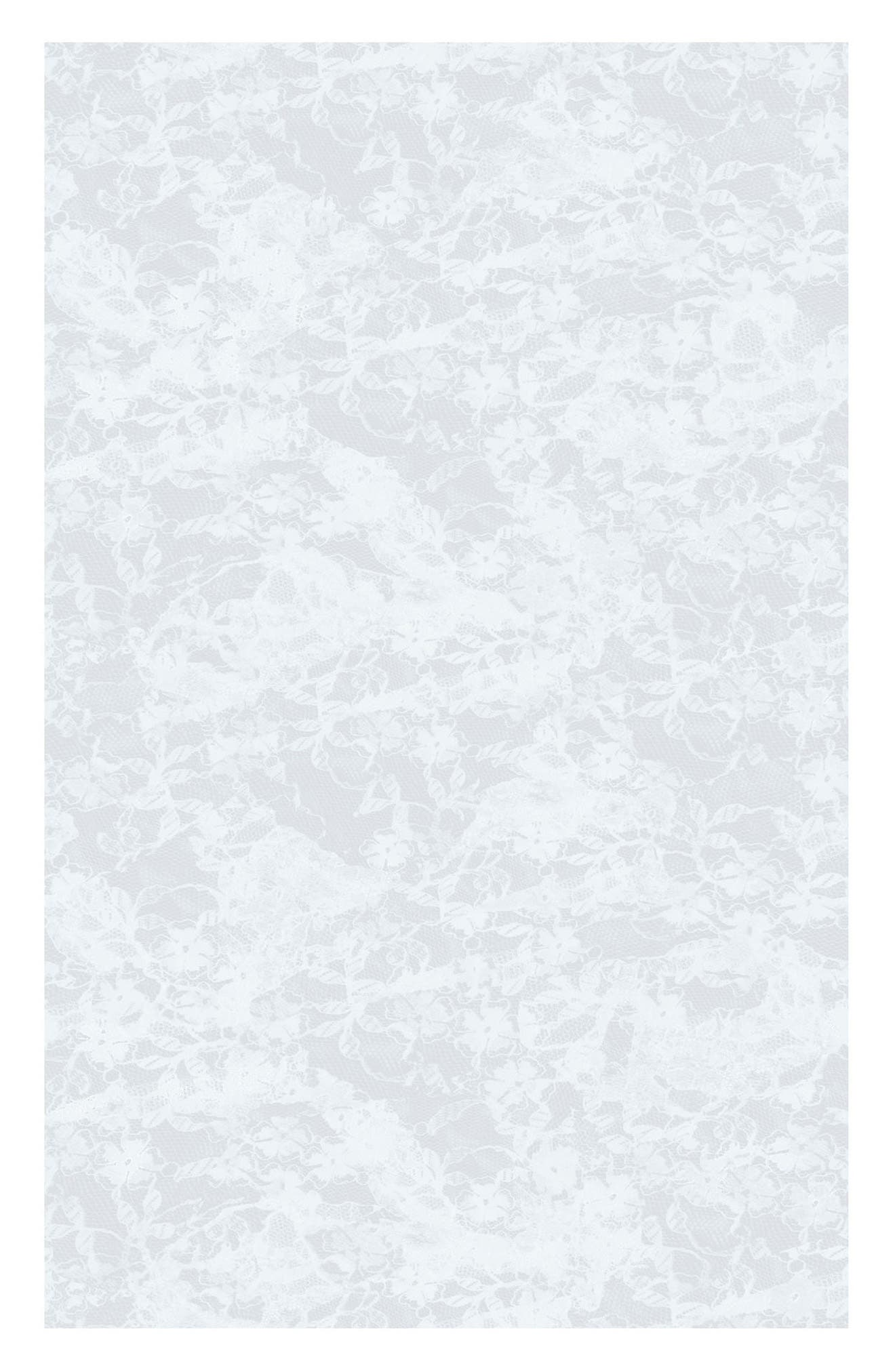 Lace  Peel & Stick Vinyl Window Cling,                         Main,                         color, Transparent
