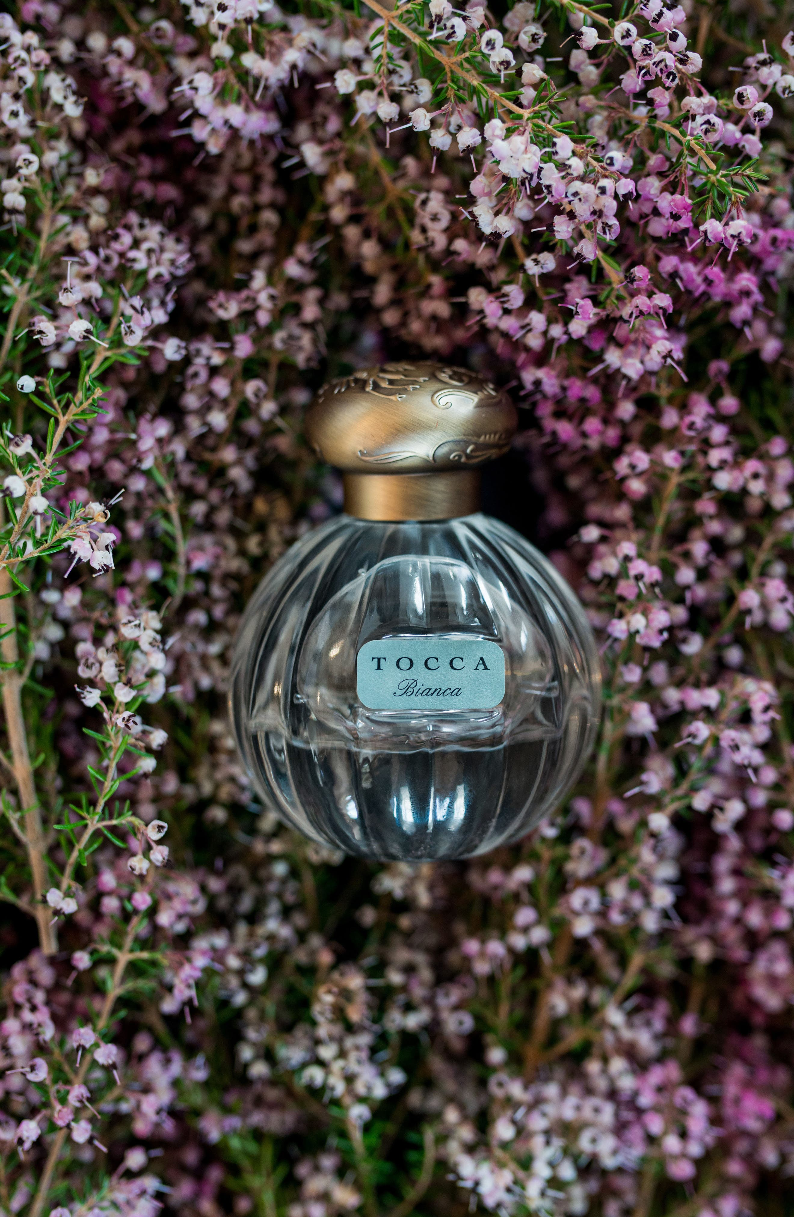 Alternate Image 3  - TOCCA 'Bianca' Eau de Parfum