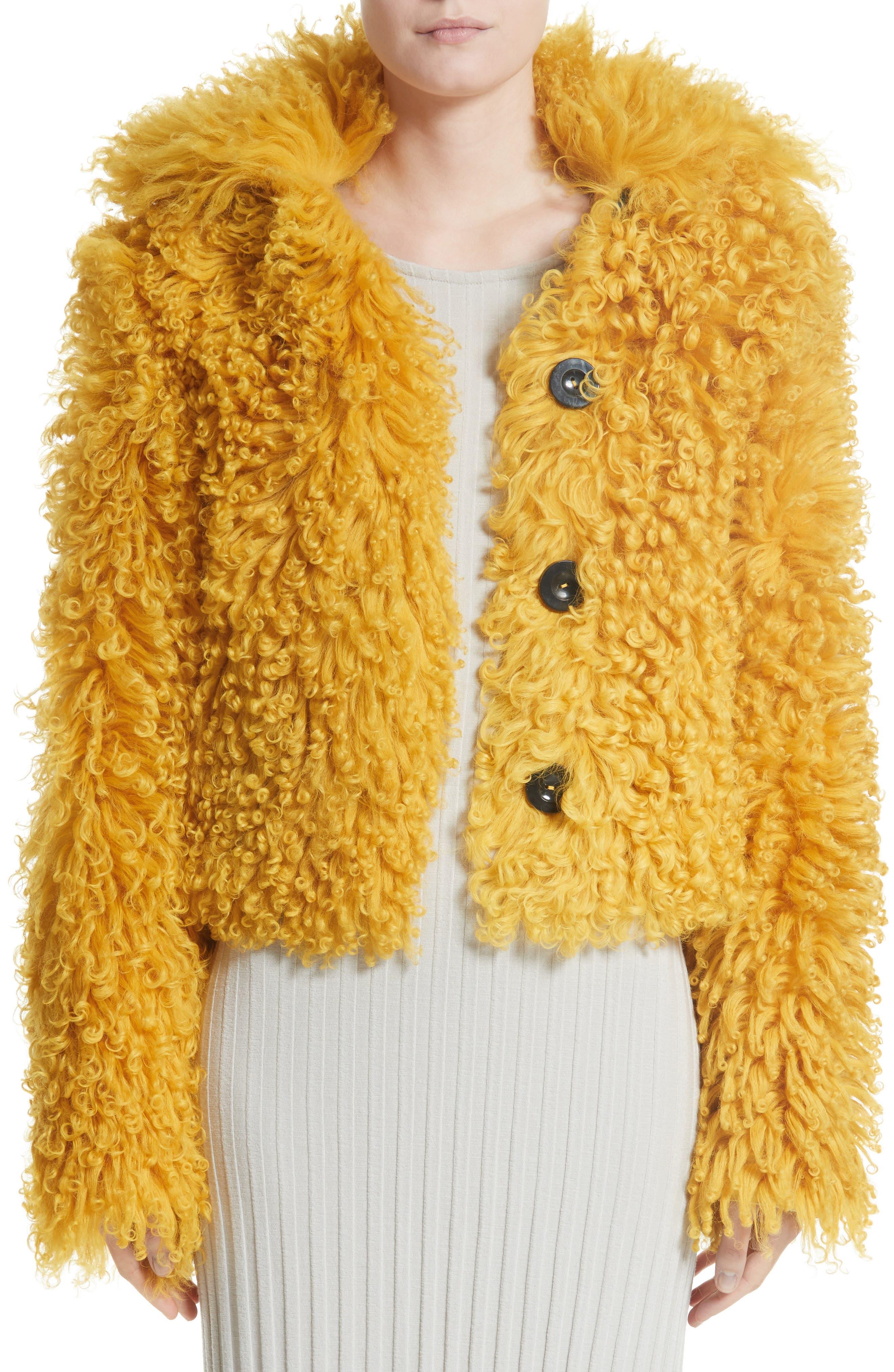 Genuine Shearling Moto Jacket,                             Main thumbnail 1, color,                             Mustard