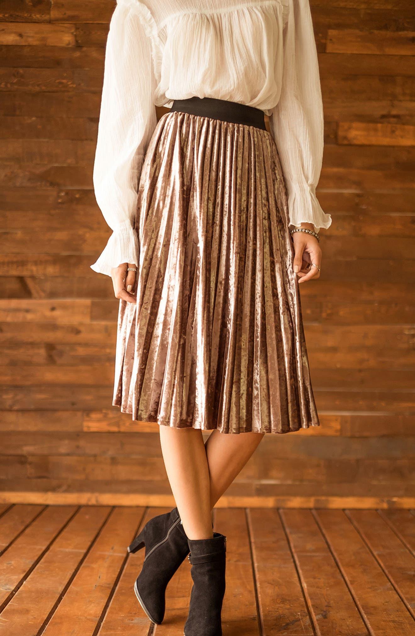 Pleated Velvet Skirt,                             Alternate thumbnail 6, color,                             Mink