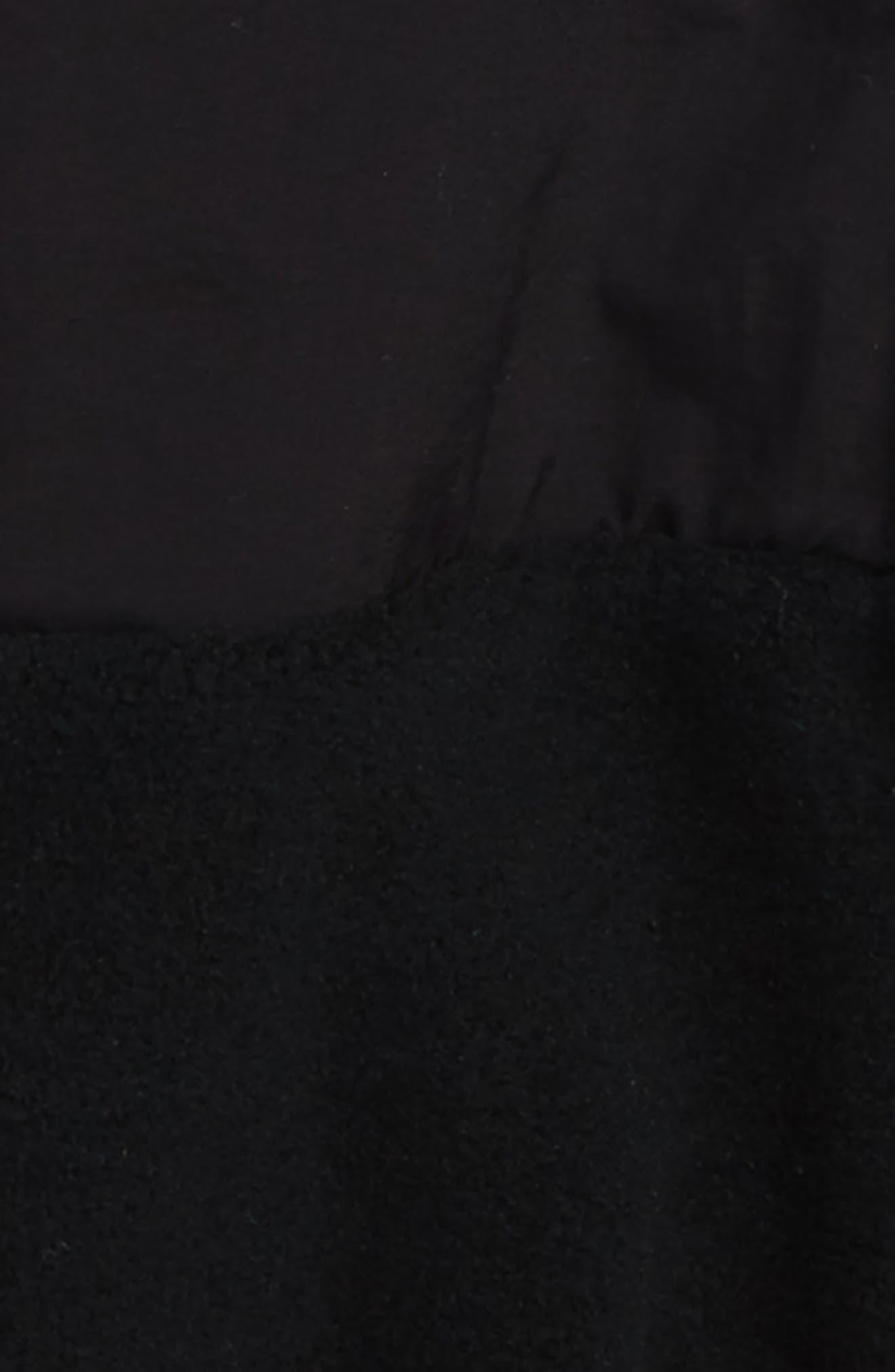 Denali Recycled Fleece Jacket,                             Alternate thumbnail 2, color,                             Tnf Black