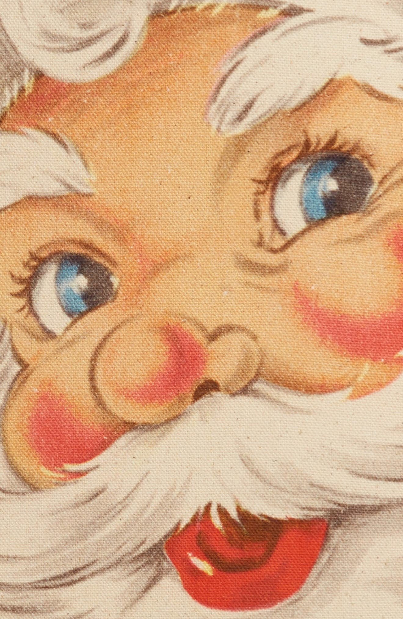 Alternate Image 3  - ALLSTATE Santa Pillow