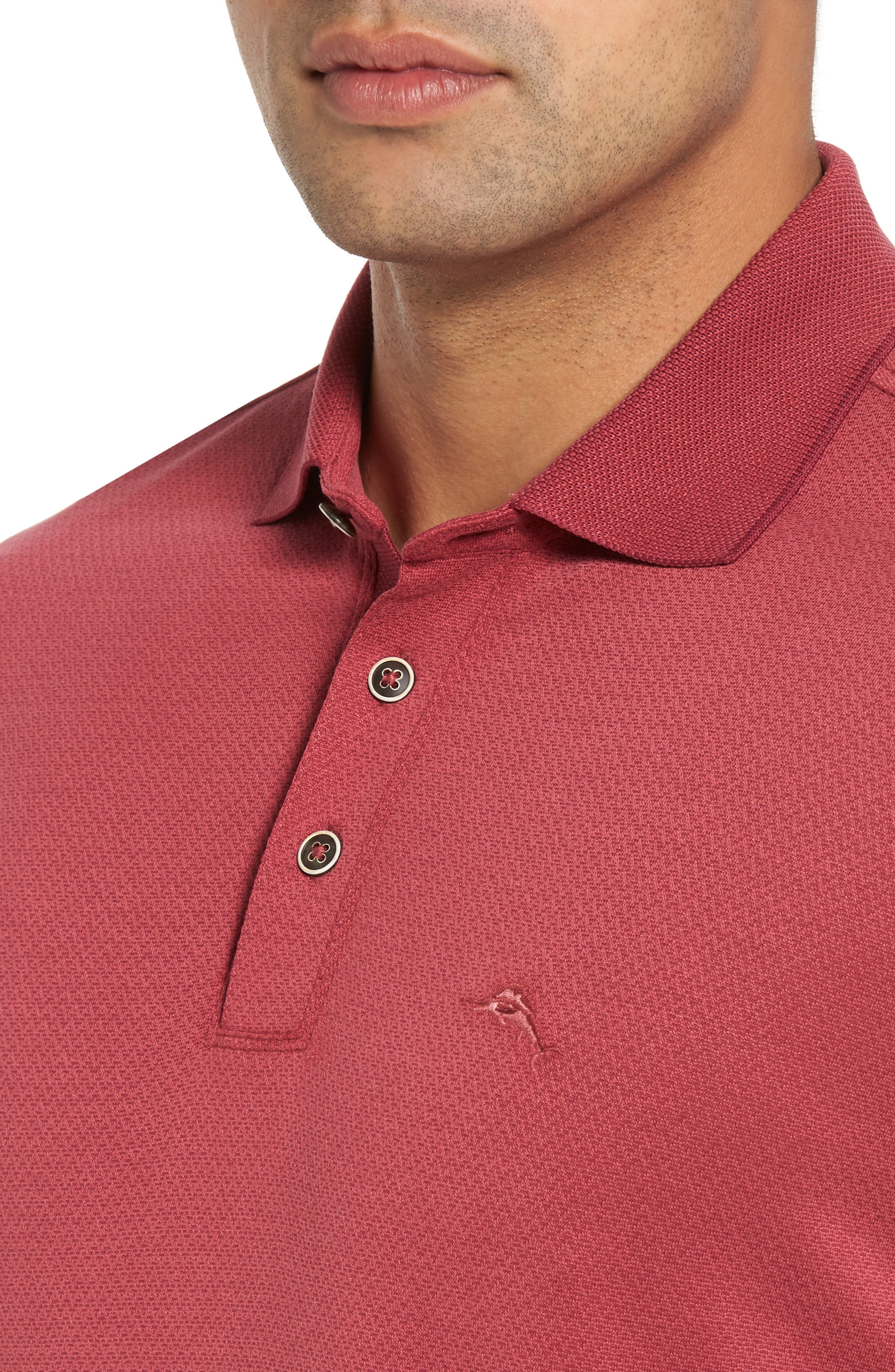 Ocean View Short Sleeve Jacquard Polo,                             Alternate thumbnail 4, color,                             Beet Red