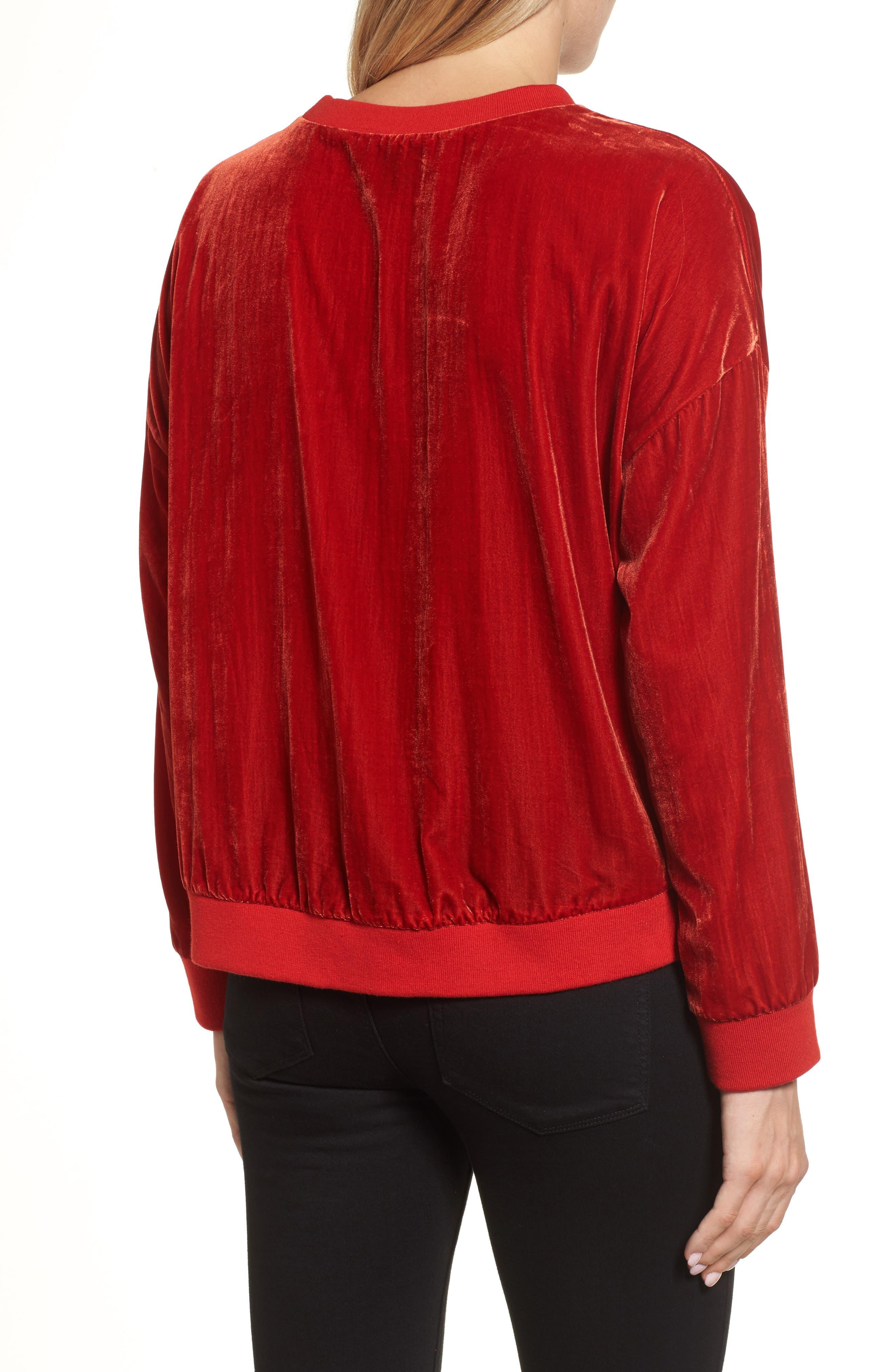 Alternate Image 2  - Kenneth Cole New York Zipper Velvet Sweatshirt