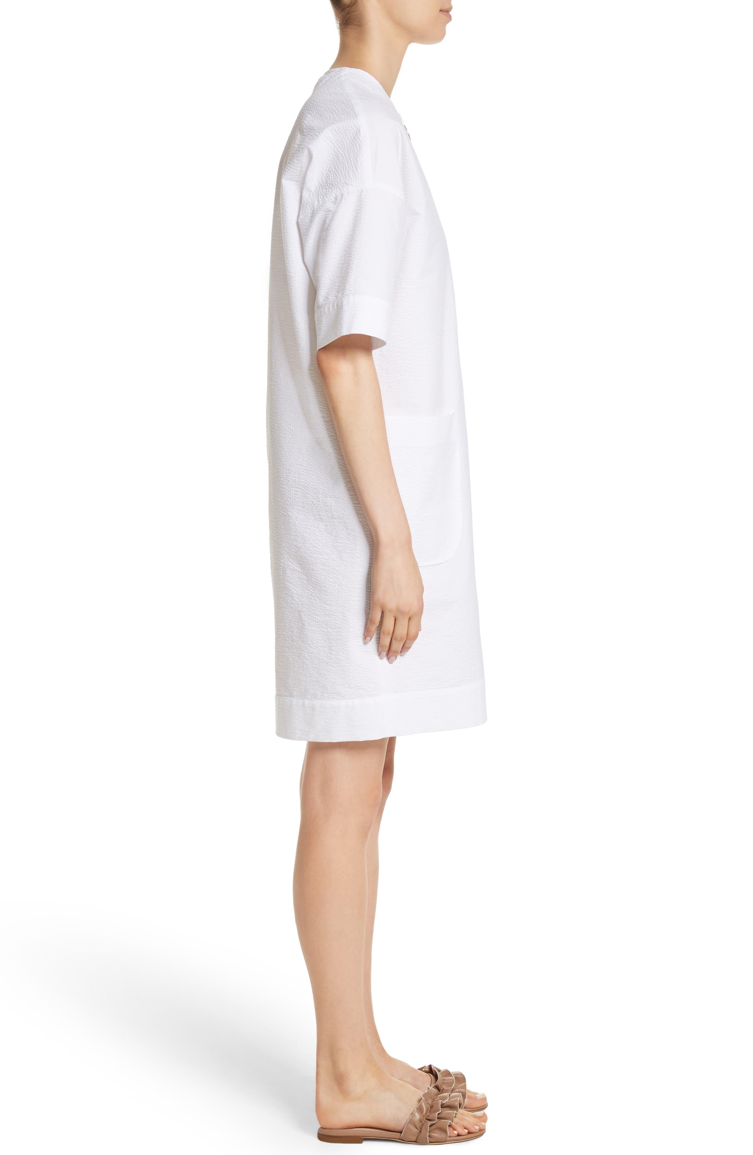 Alternate Image 3  - Fabiana Filippi Seersucker Shift Dress