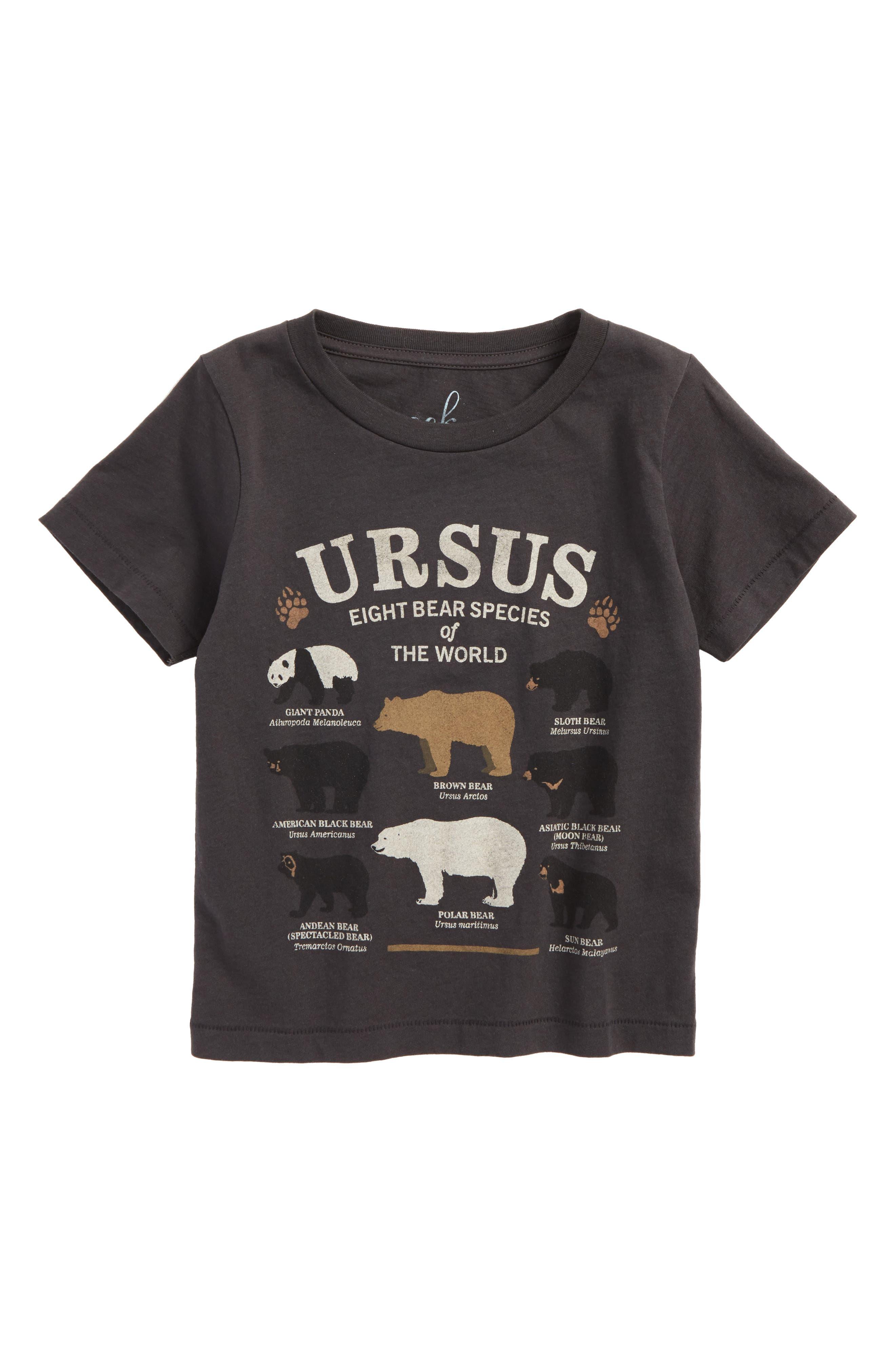 Main Image - Peek Bear Species Graphic T-Shirt (Toddler Boys, Little Boys & Big Boys)