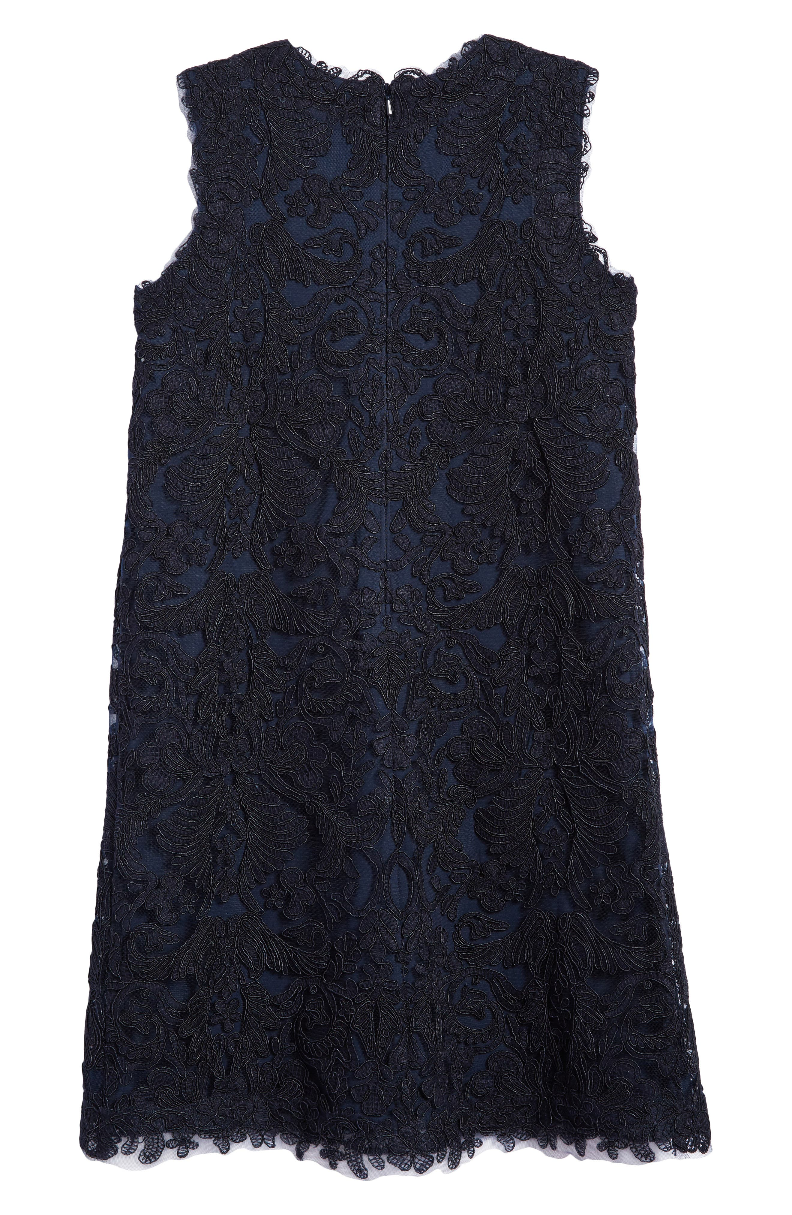 'Honeysuckle' Embroidered Tulle Dress,                             Alternate thumbnail 2, color,                             Navy