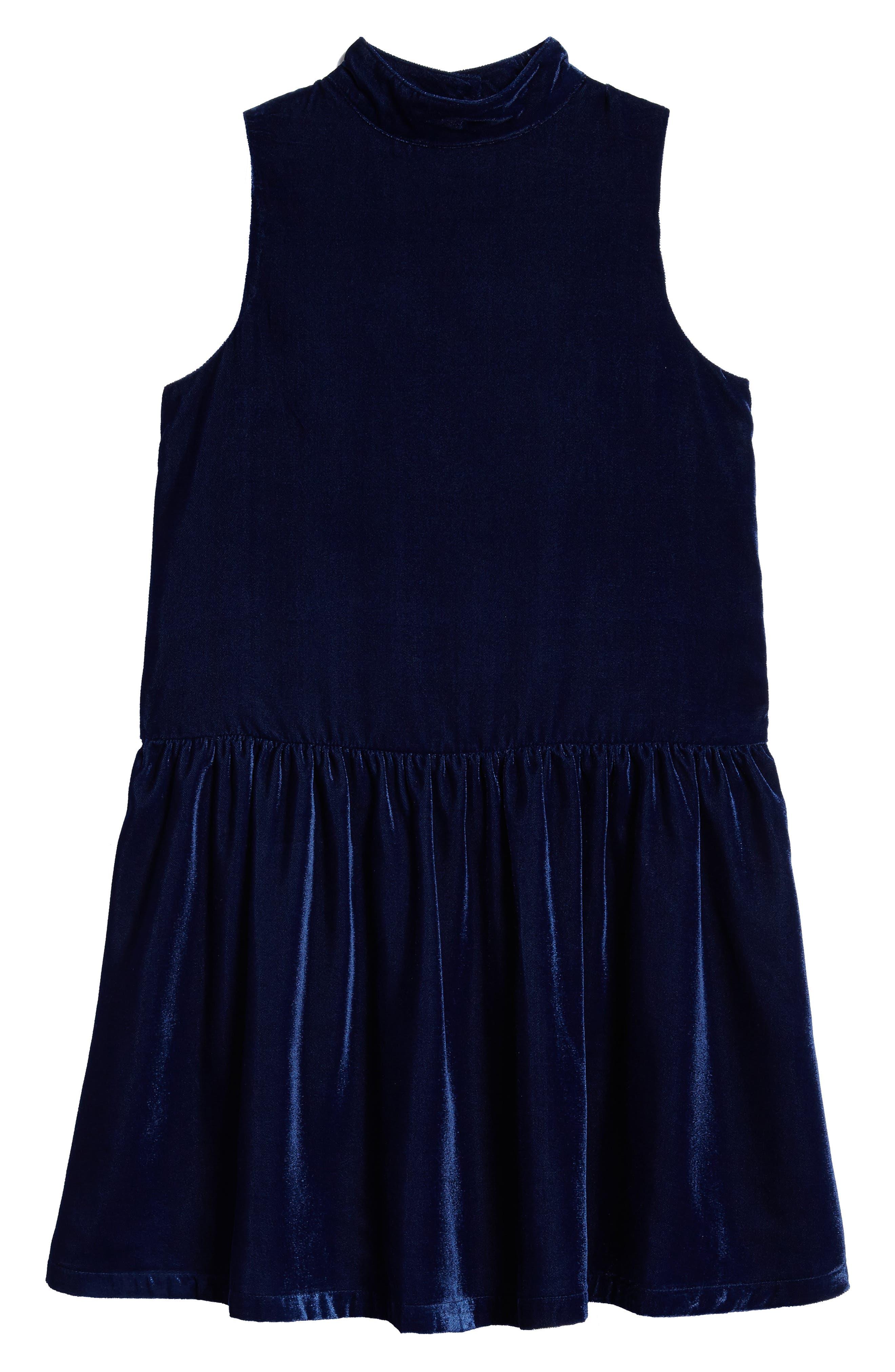 Velvet Drop Waist Dress,                         Main,                         color, Navy Medieval
