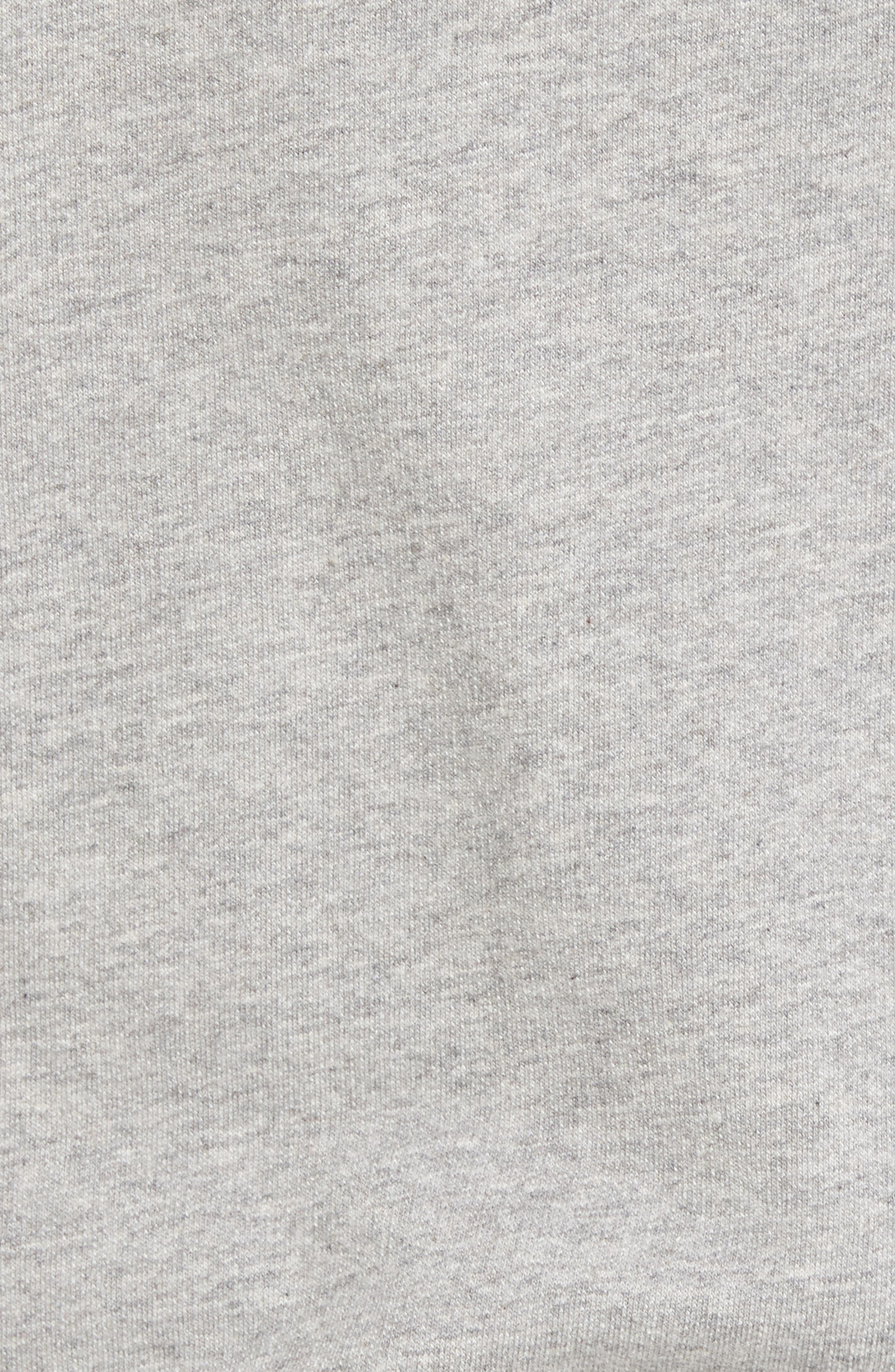 Fitz Roy Frostbite PolyCycle<sup>®</sup> Full Zip Hoodie,                             Alternate thumbnail 5, color,                             Feather Grey