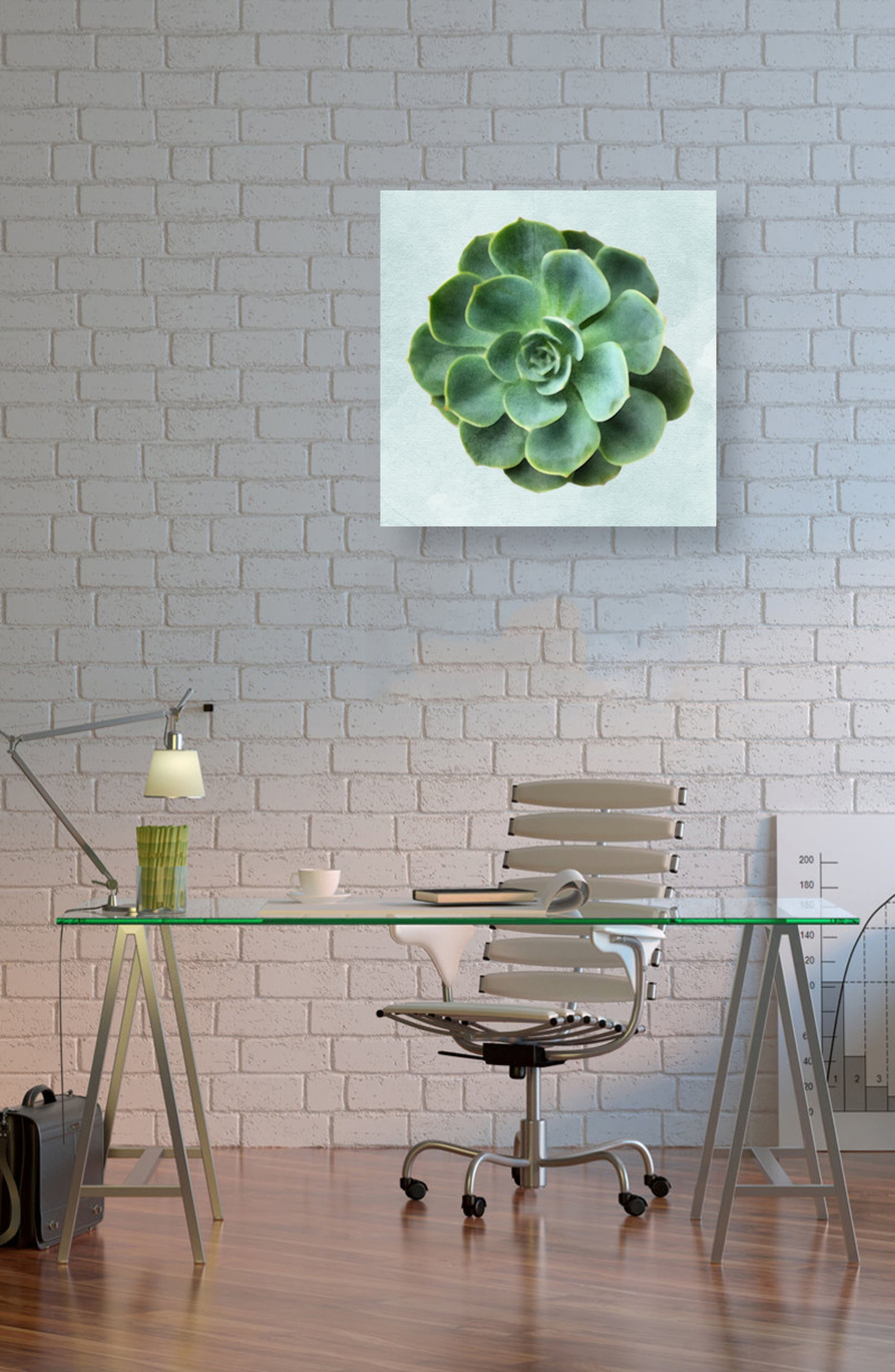 Succulent Dream III Canvas Wall Art,                             Alternate thumbnail 2, color,                             Green
