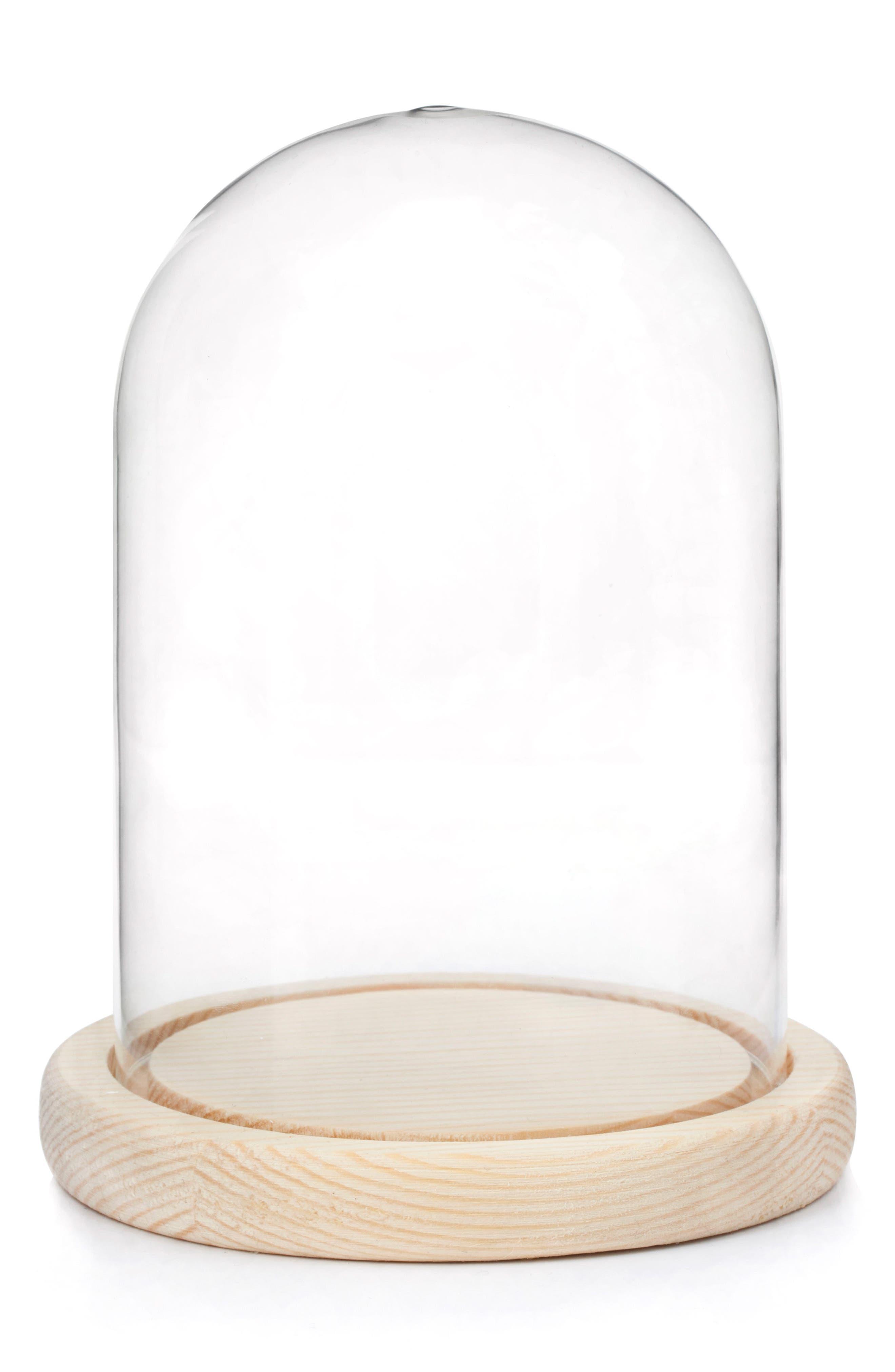 Kikkerland Design Bell Jar