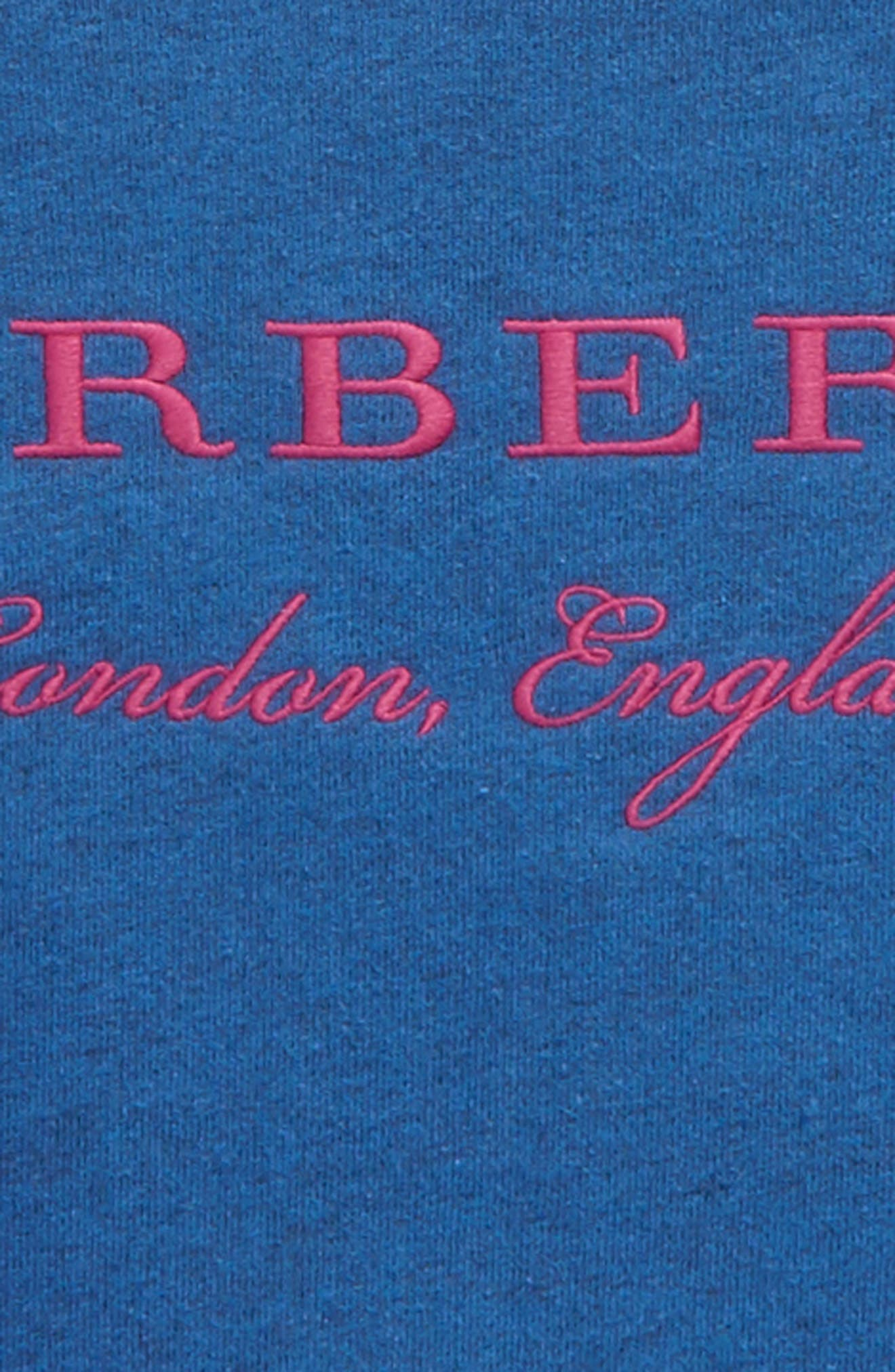 Eli Stripe Jersey Sweatshirt,                             Alternate thumbnail 2, color,                             Hydrangea Blue
