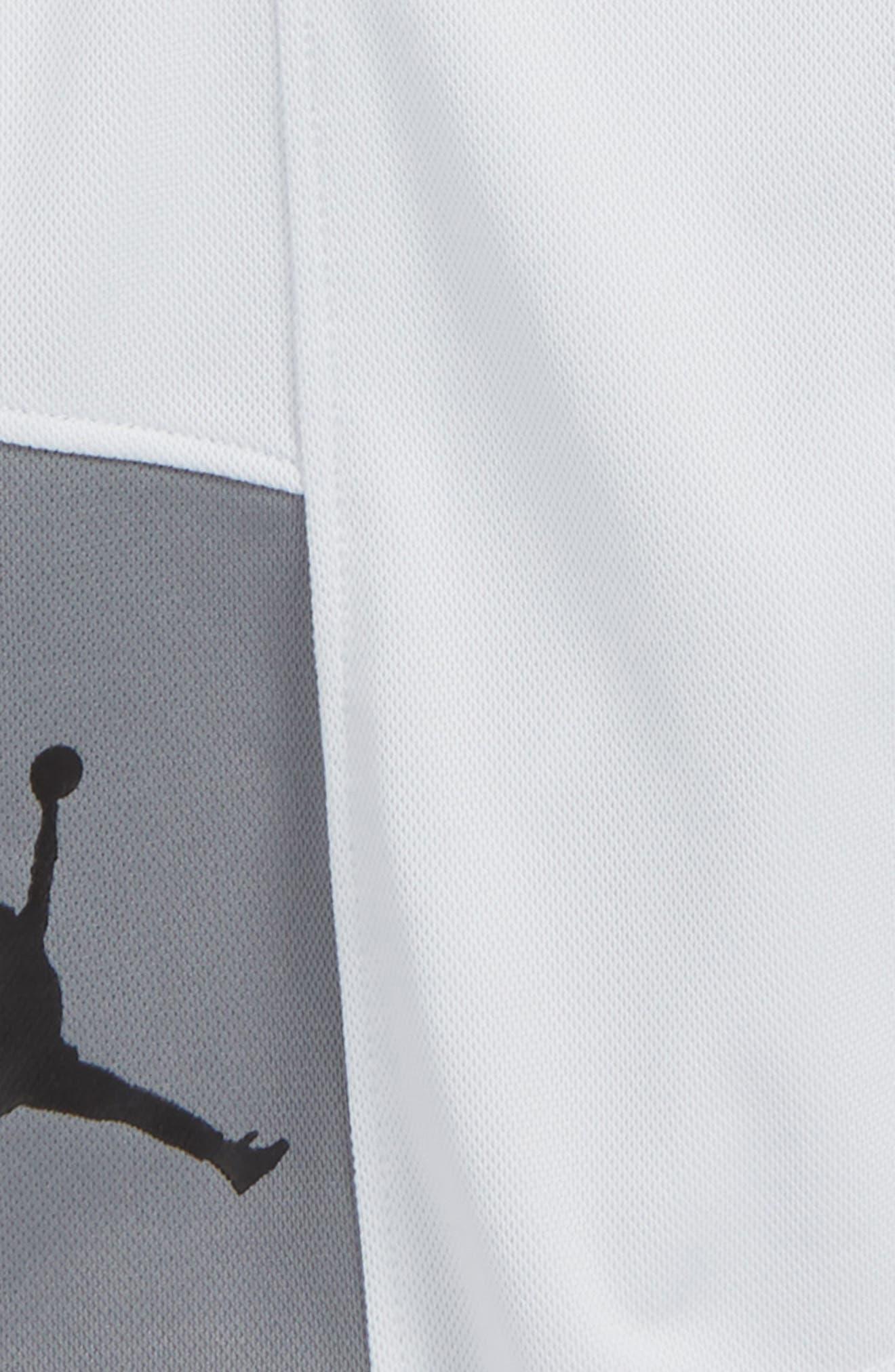 Jordan Elevate Shorts,                             Alternate thumbnail 2, color,                             Pure Platinum
