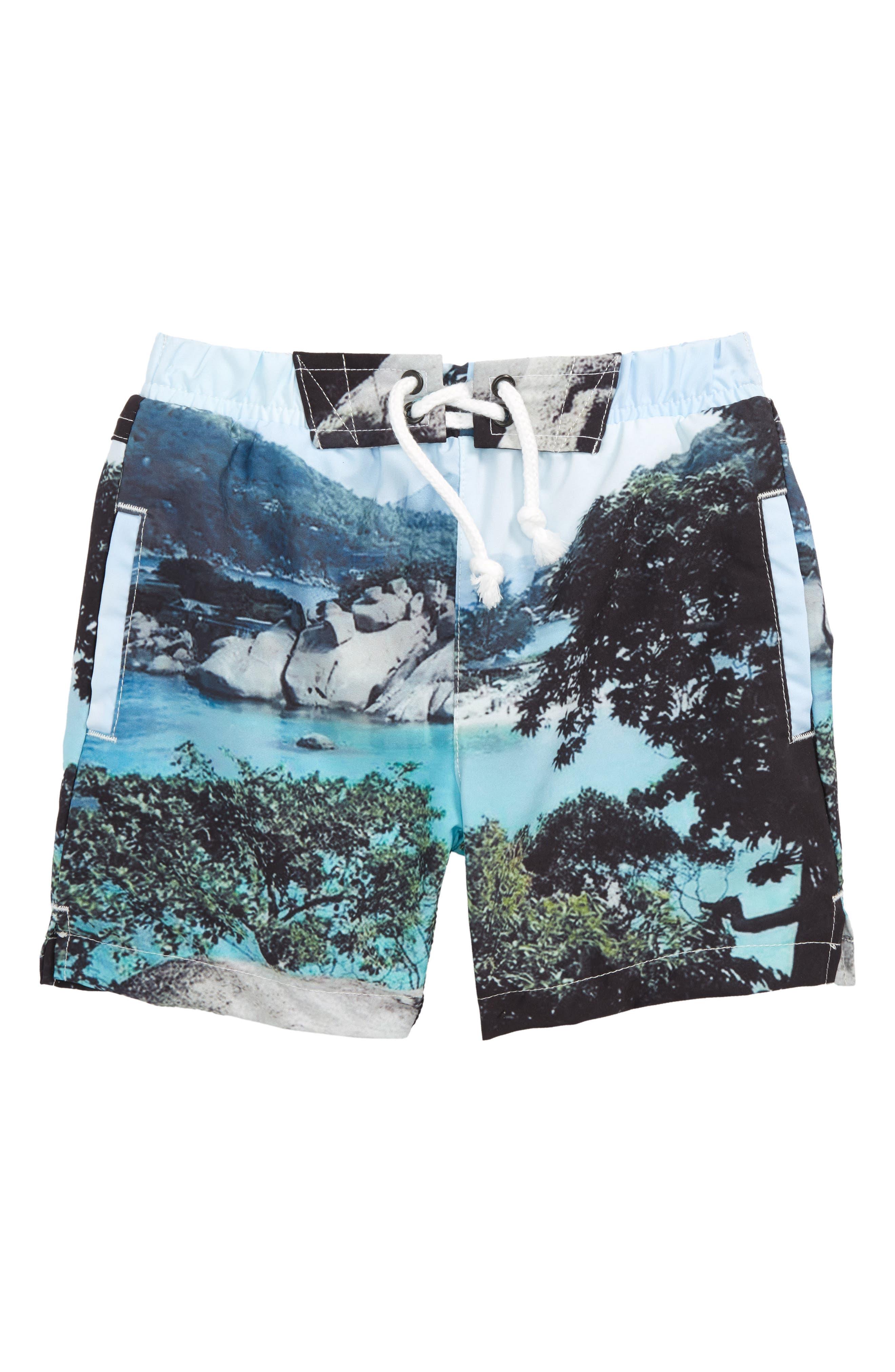 Harbor Swim Shorts,                         Main,                         color, Cliffs