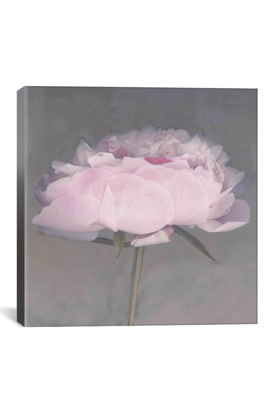'Jolie - Erin Clark' Giclée Print Canvas Art,                             Main thumbnail 1, color,                             Pink
