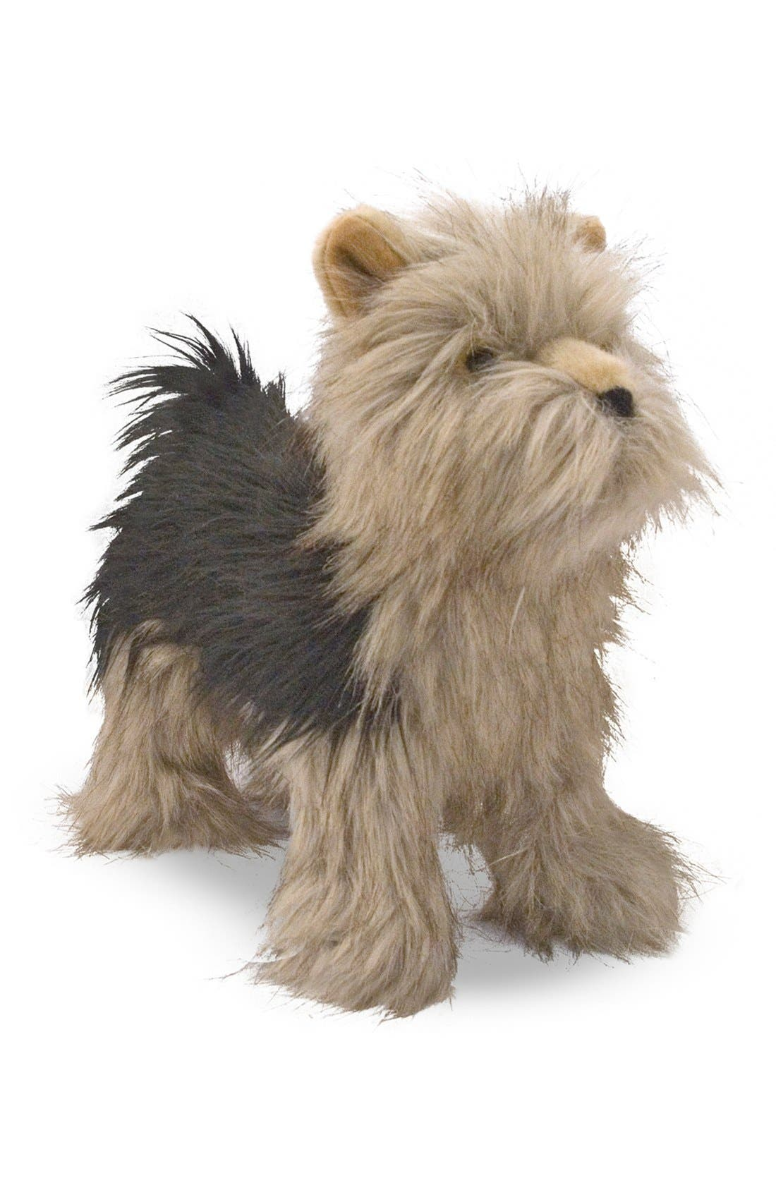 Oversized Yorkshire Terrier,                         Main,                         color, Brown
