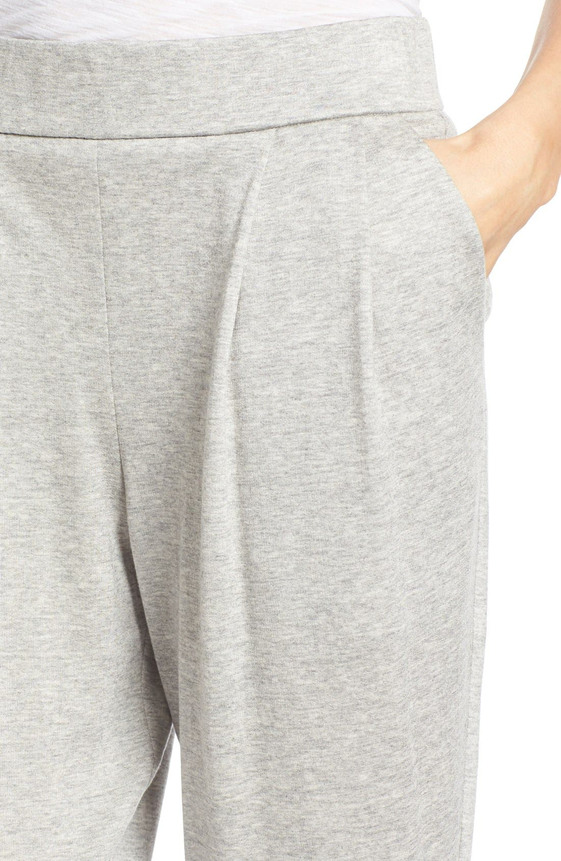 Alternate Image 4  - Eileen Fisher Slouchy Pleat Front Ankle Pants