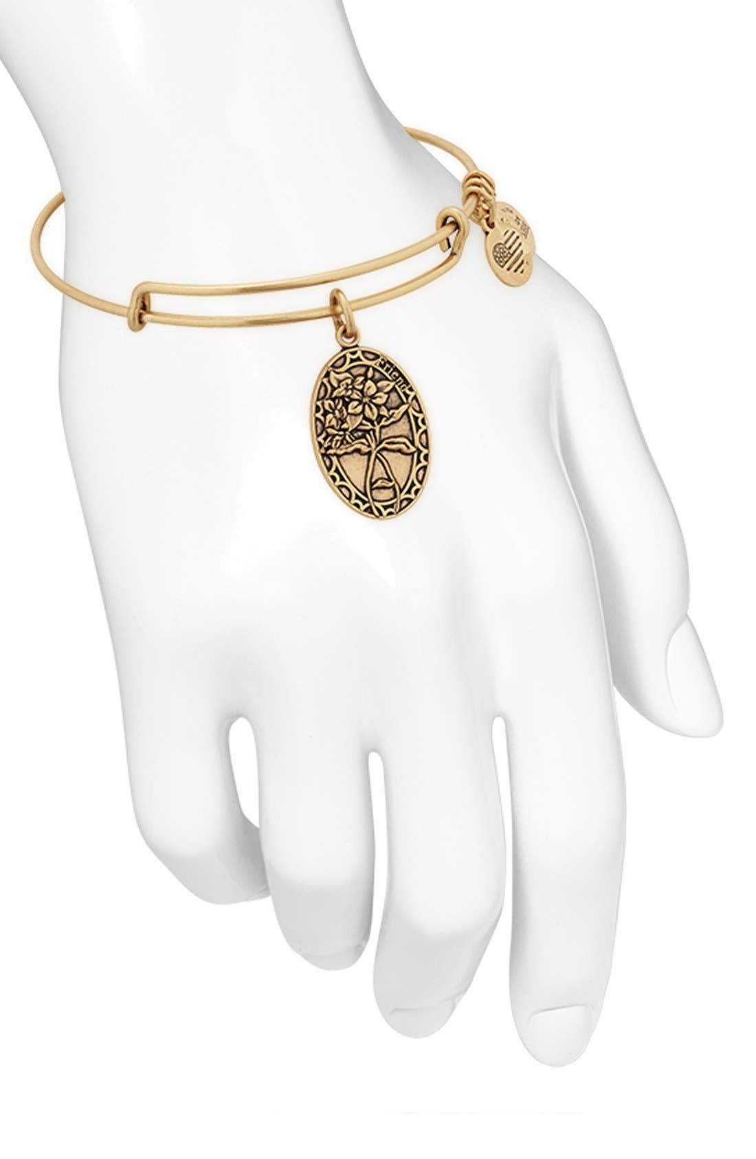 Alternate Image 4  - Alex and Ani 'I Love You Friend' Expandable Wire Bangle