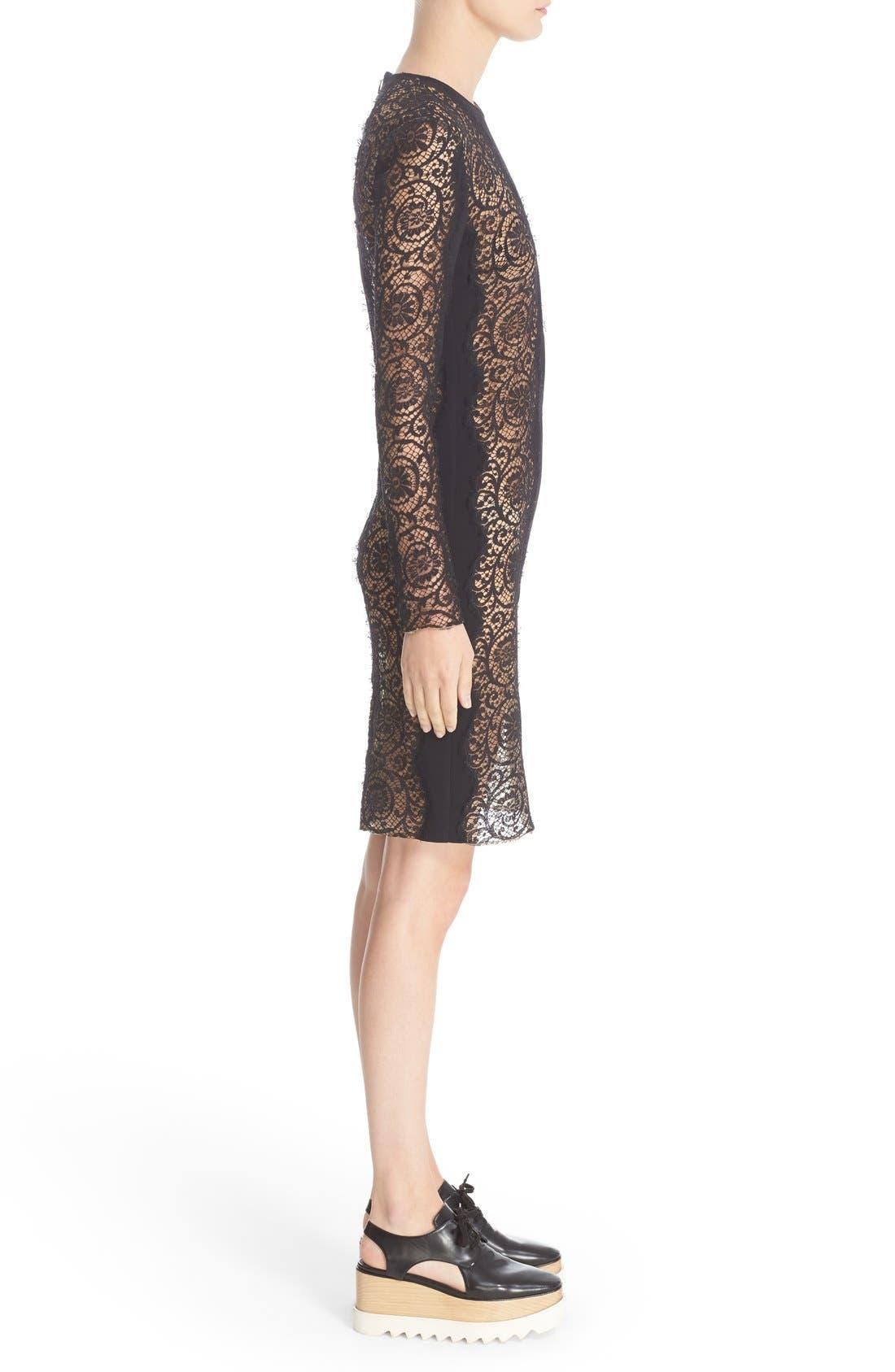 Alternate Image 5  - Stella McCartney Charlie Lace Dress