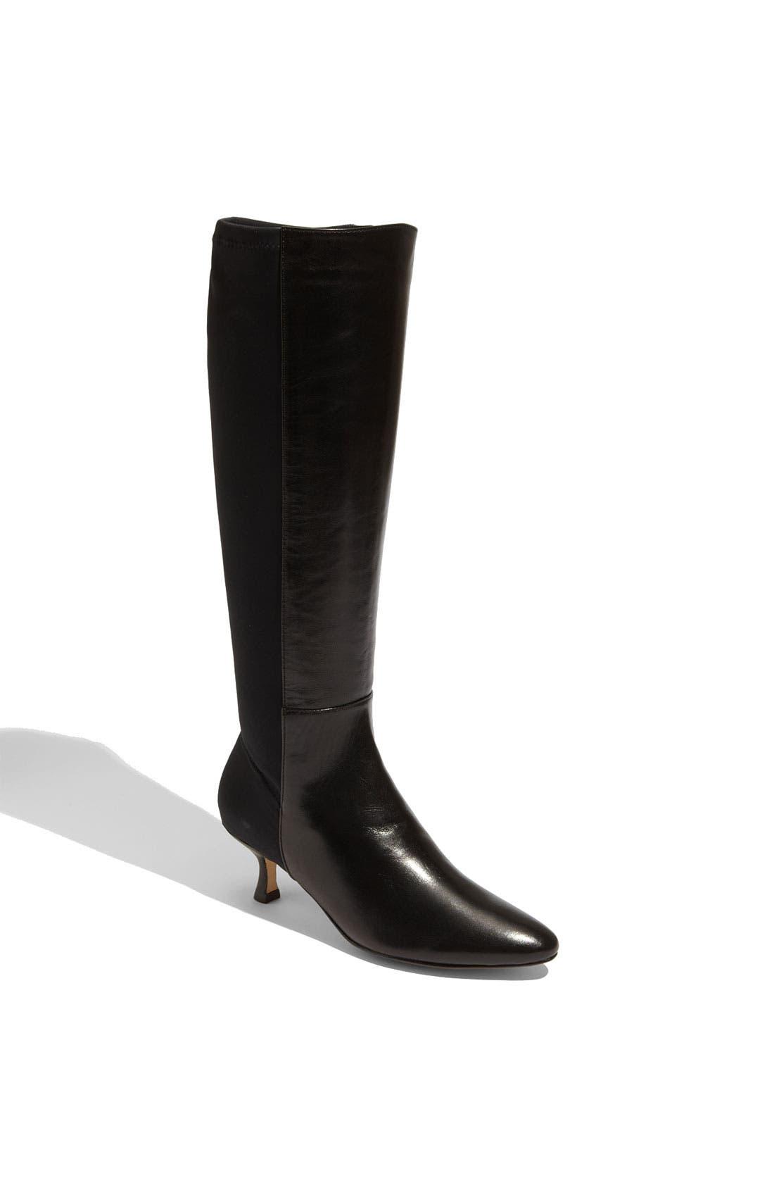 Alternate Image 1 Selected - VANELi 'Eanna' Stretch Boot
