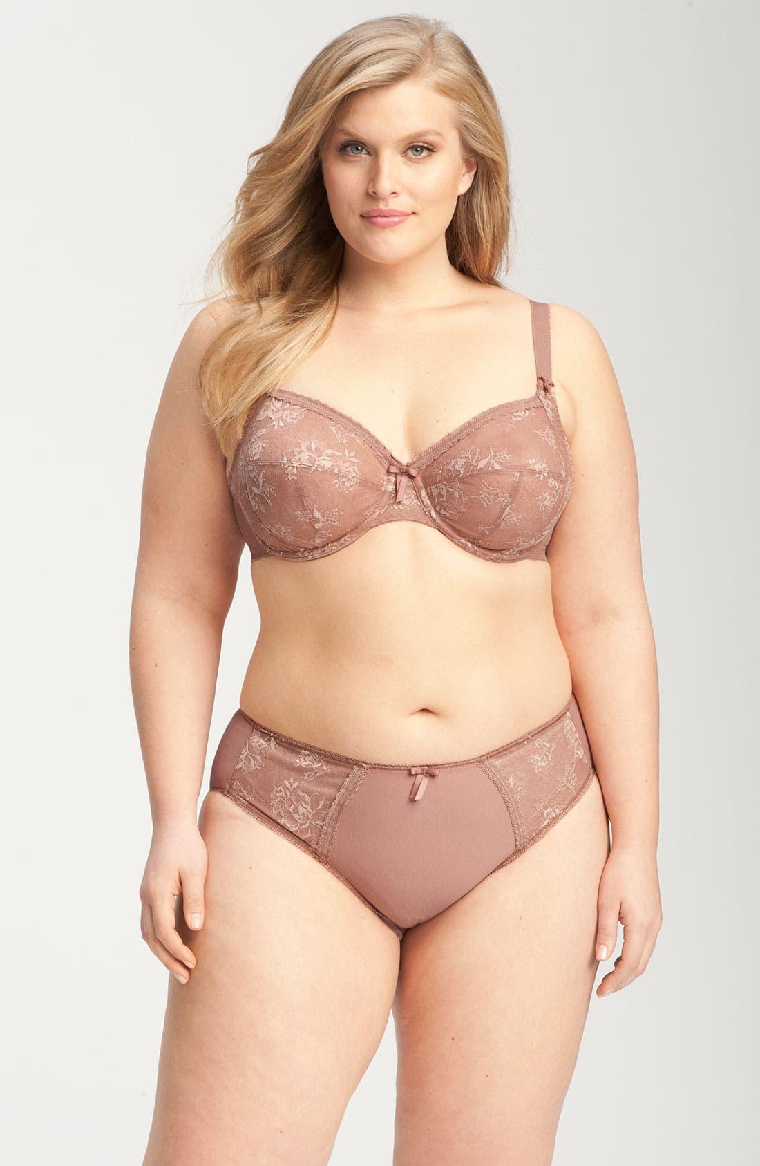 Alternate Image 4  - Elomi 'Victoria' Brief (Plus Size)