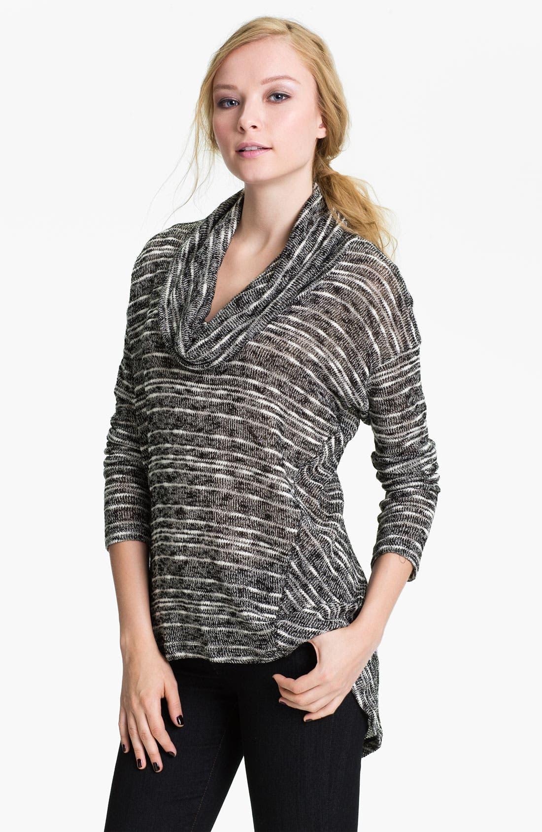 Alternate Image 1 Selected - Splendid Stripe Cowl Neck Sweater