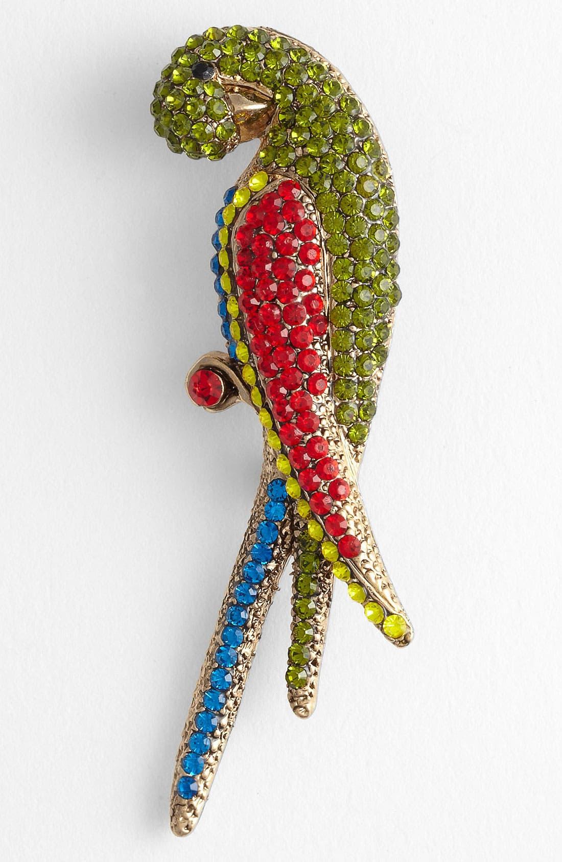 Main Image - Tasha 'Critters' Parrot Brooch