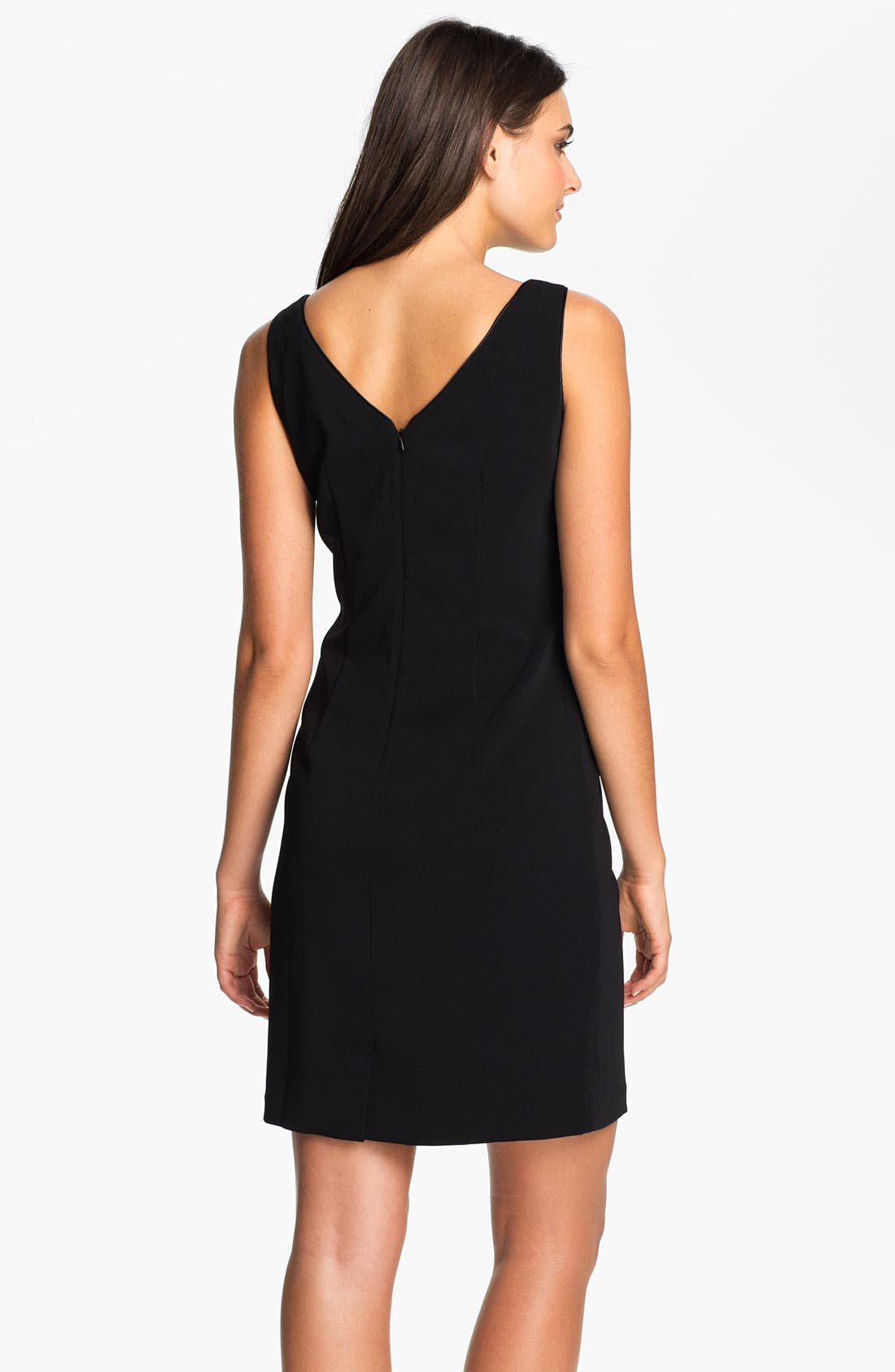 Alternate Image 2  - Donna Ricco Sleeveless Sheath Dress (Petite)