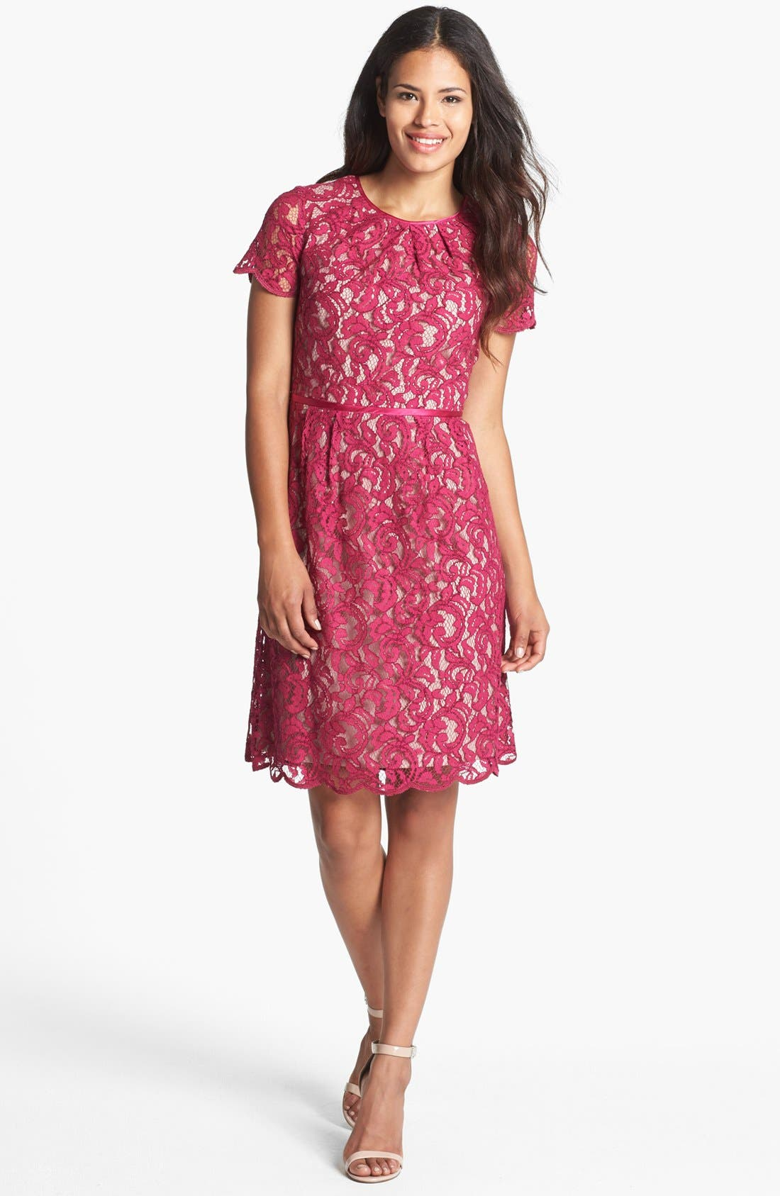 Alternate Image 1 Selected - Adrianna Papell Scalloped Lace Dress (Regular & Petite)