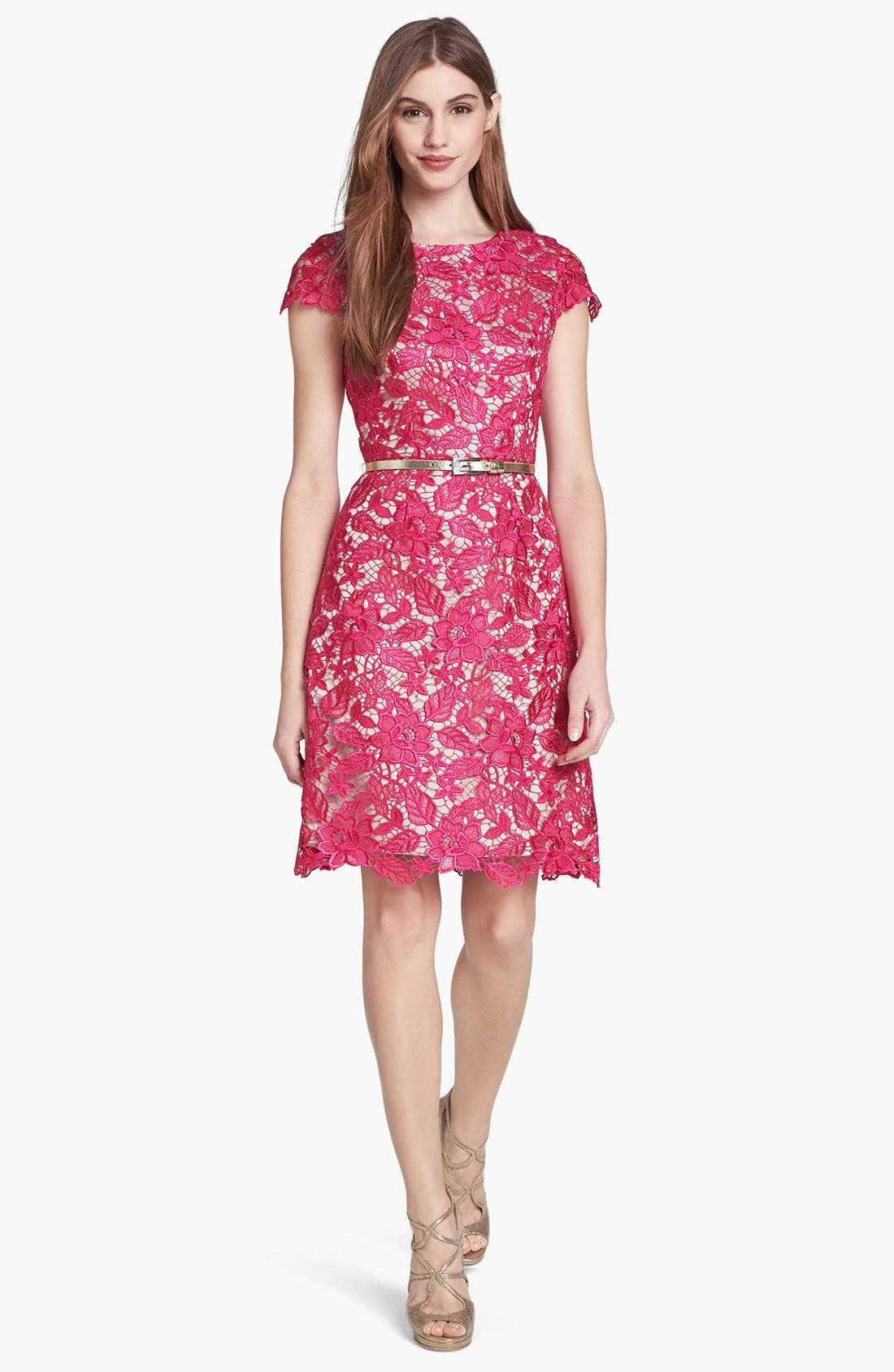 Main Image - Eliza J Lace Fit & Flare Dress (Petite)